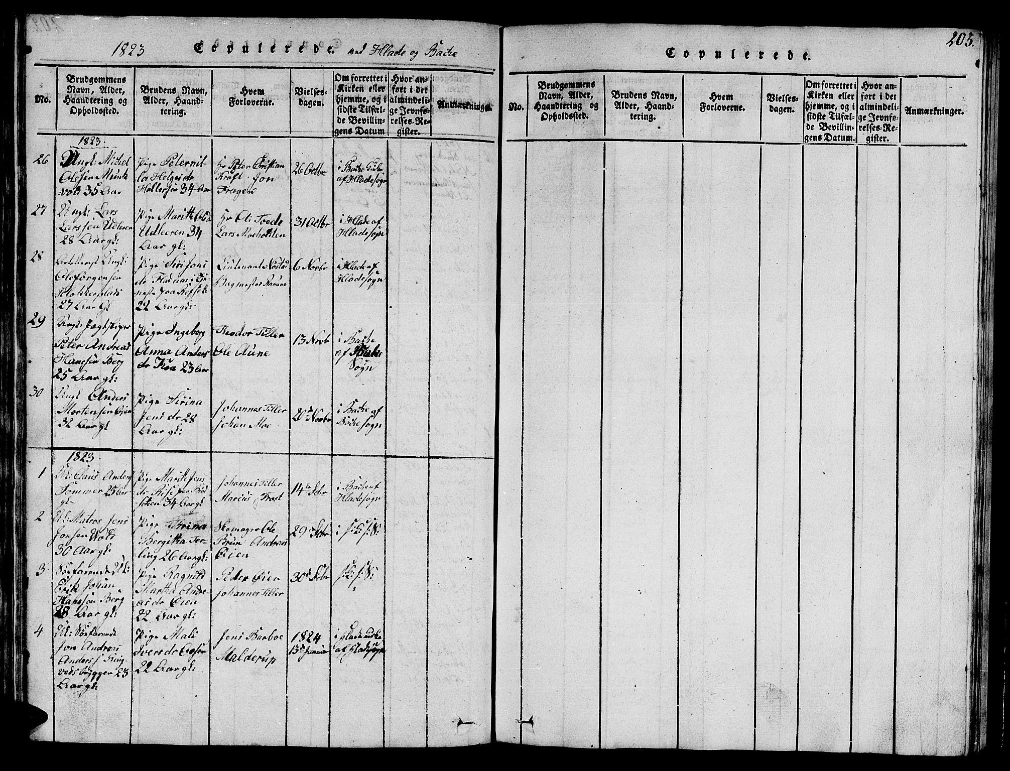 SAT, Ministerialprotokoller, klokkerbøker og fødselsregistre - Sør-Trøndelag, 606/L0307: Klokkerbok nr. 606C03, 1817-1824, s. 203