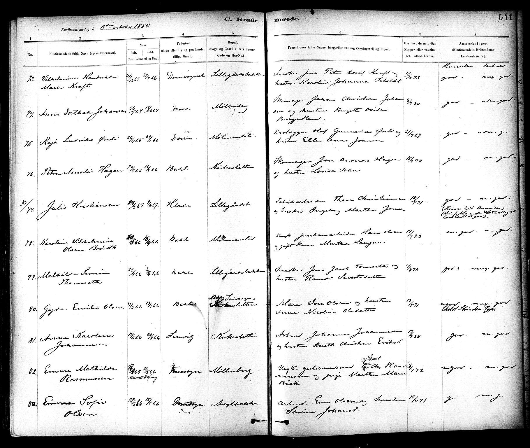 SAT, Ministerialprotokoller, klokkerbøker og fødselsregistre - Sør-Trøndelag, 604/L0188: Ministerialbok nr. 604A09, 1878-1892, s. 541