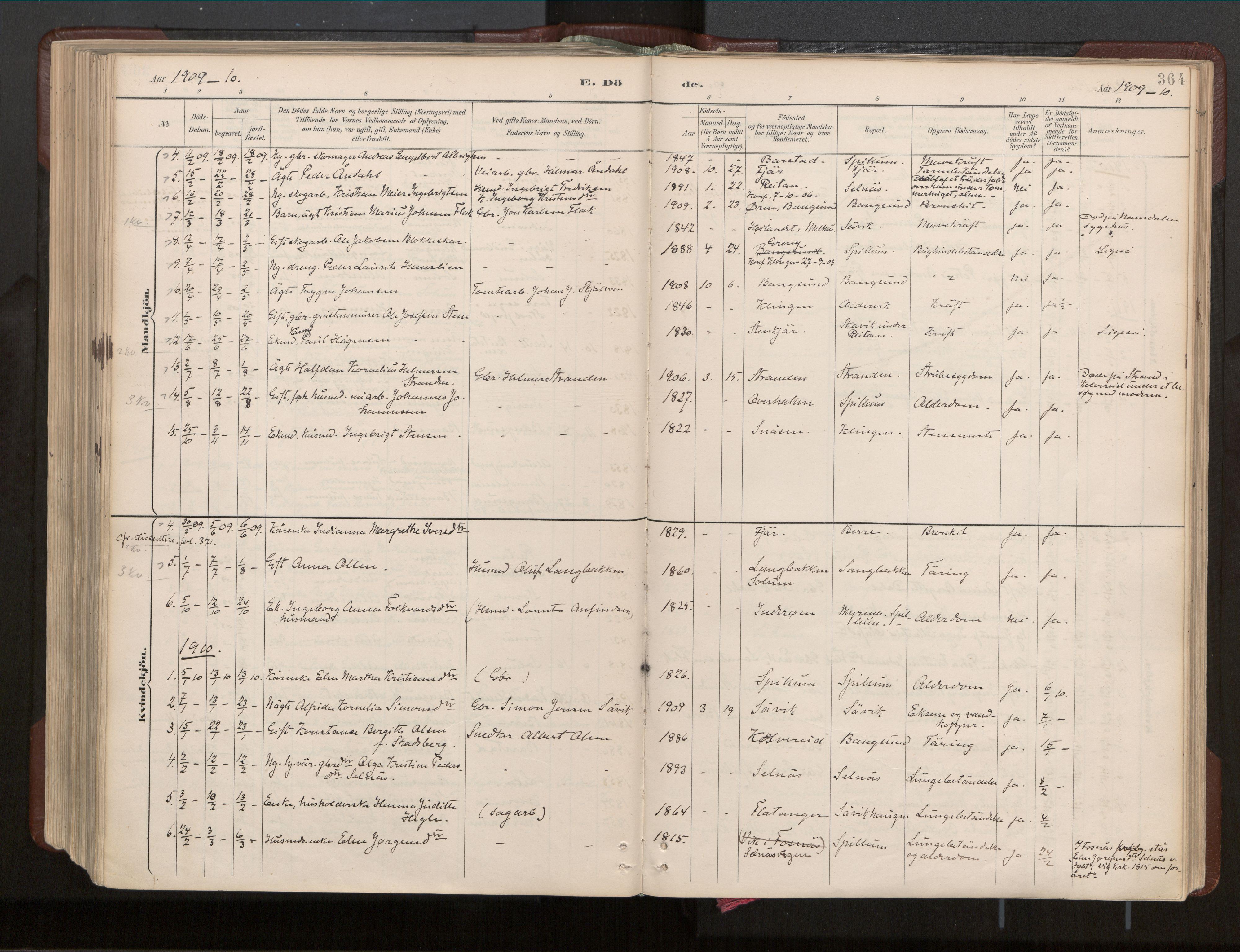 SAT, Ministerialprotokoller, klokkerbøker og fødselsregistre - Nord-Trøndelag, 770/L0589: Ministerialbok nr. 770A03, 1887-1929, s. 364