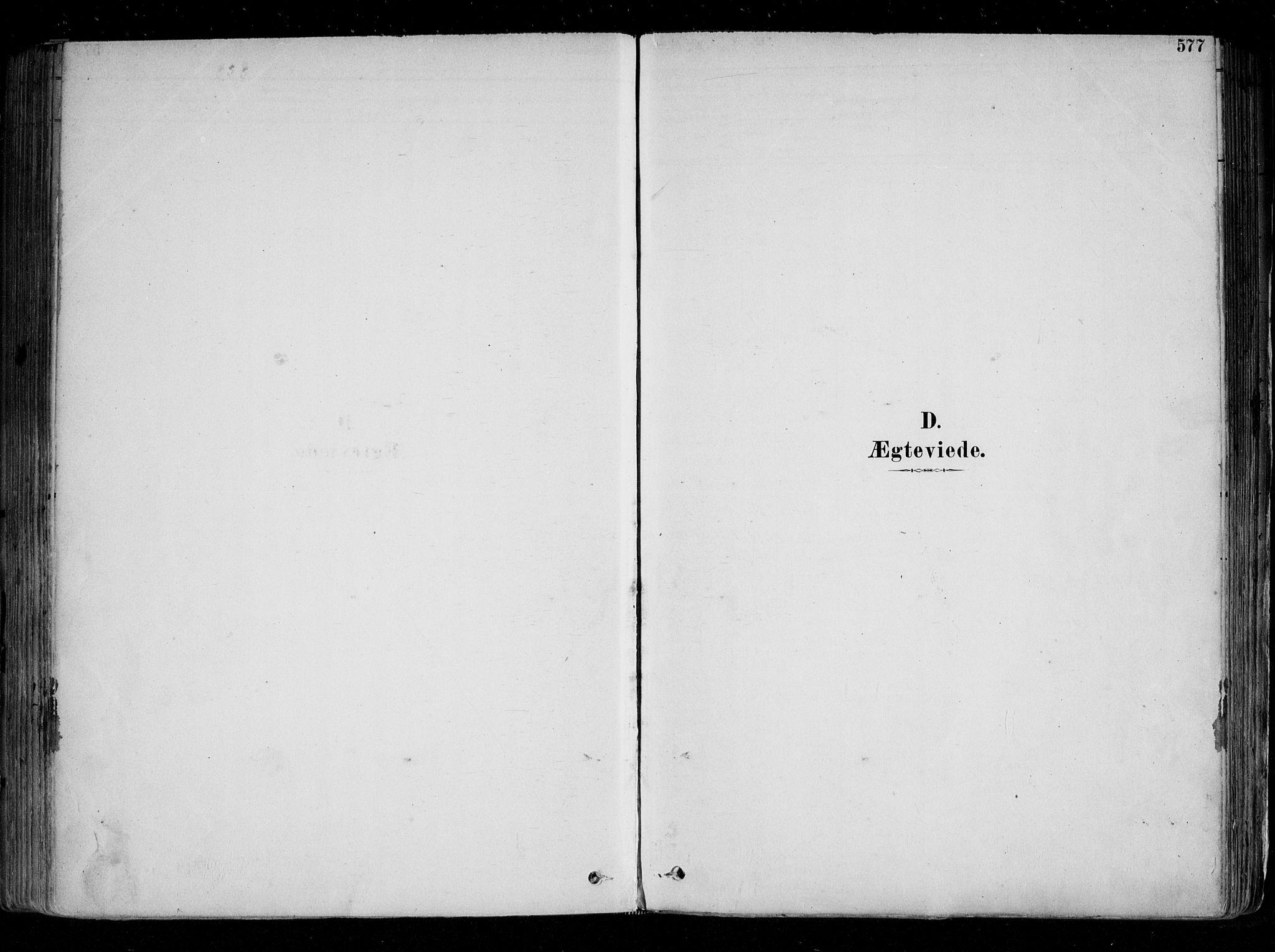 SAO, Fredrikstad domkirkes prestekontor Kirkebøker, F/Fa/L0004: Ministerialbok nr. 4, 1878-1907, s. 577