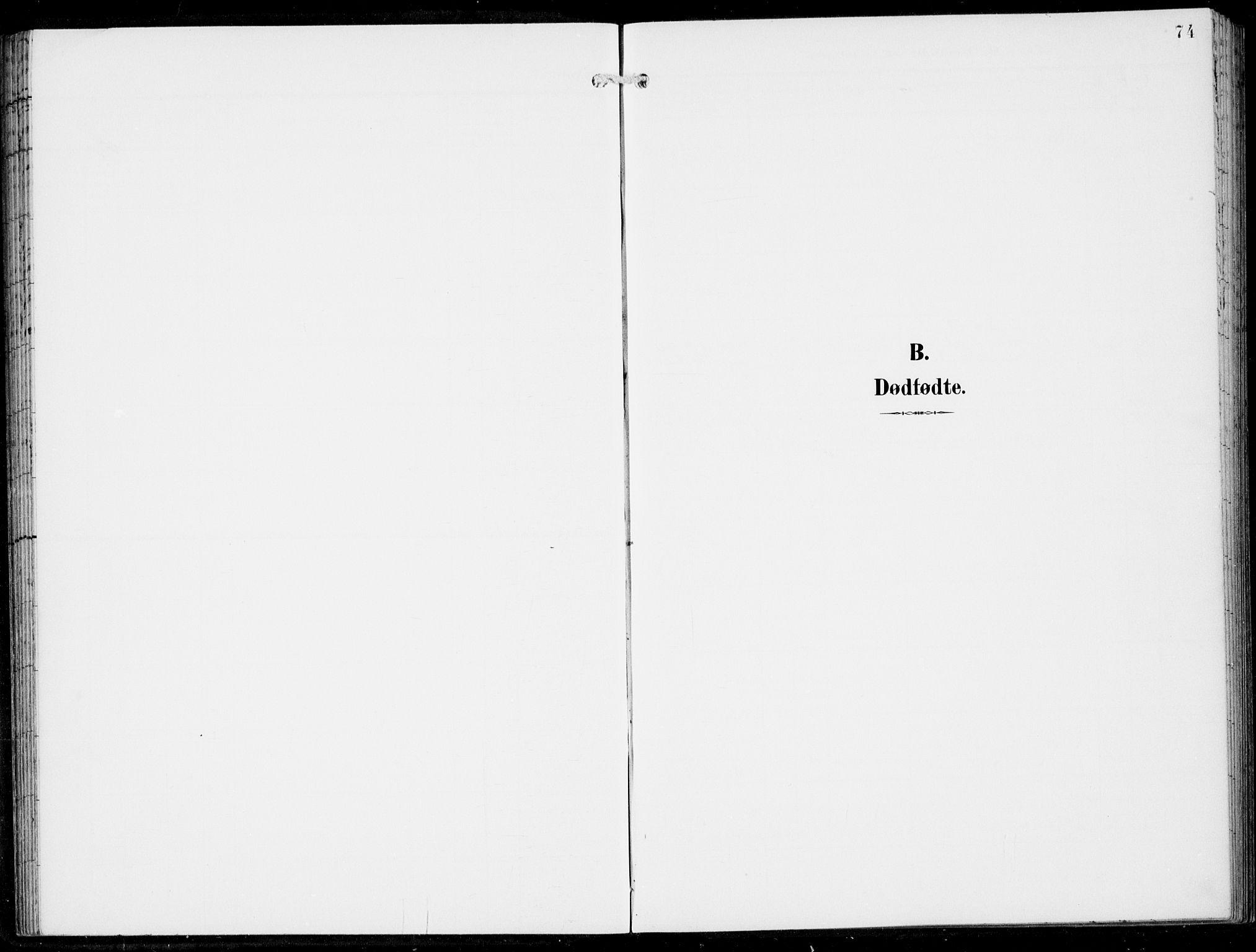 SAB, Haus Sokneprestembete, H/Haa: Ministerialbok nr. B  2, 1899-1912, s. 74