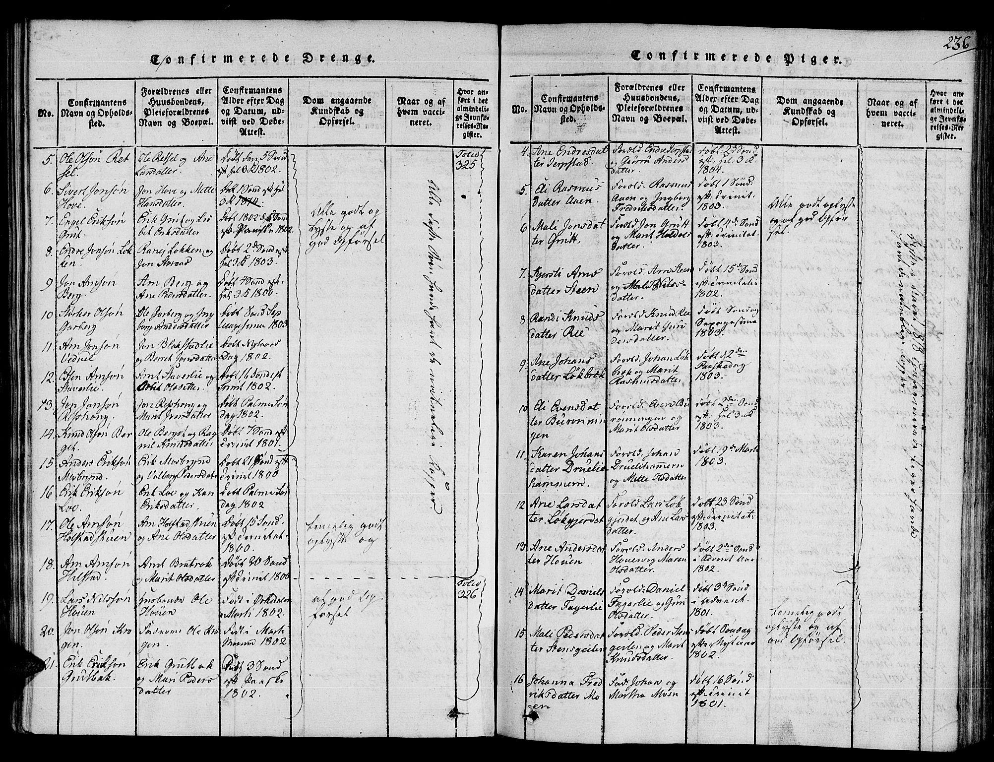 SAT, Ministerialprotokoller, klokkerbøker og fødselsregistre - Sør-Trøndelag, 672/L0853: Ministerialbok nr. 672A06 /1, 1816-1829, s. 236