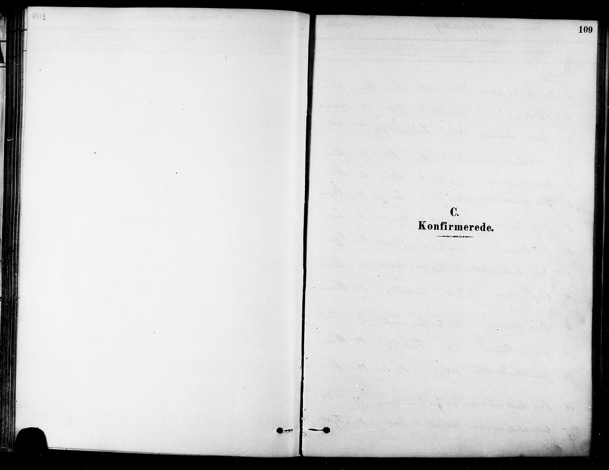 SAT, Ministerialprotokoller, klokkerbøker og fødselsregistre - Sør-Trøndelag, 657/L0707: Ministerialbok nr. 657A08, 1879-1893, s. 109