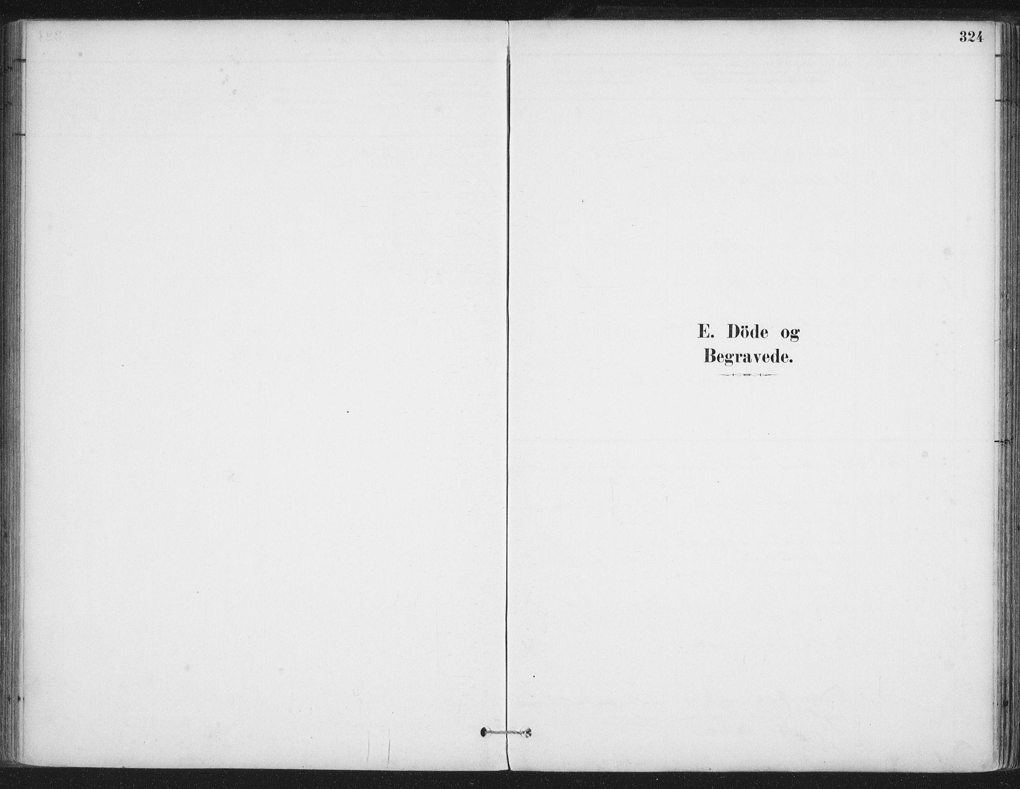 SAT, Ministerialprotokoller, klokkerbøker og fødselsregistre - Nordland, 888/L1244: Ministerialbok nr. 888A10, 1880-1890, s. 324