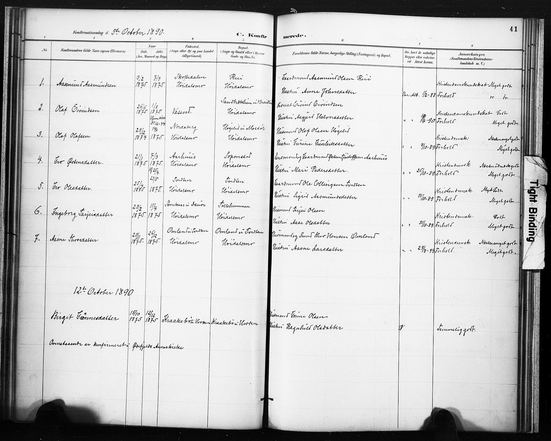 SAKO, Lårdal kirkebøker, F/Fc/L0002: Ministerialbok nr. III 2, 1887-1906, s. 41