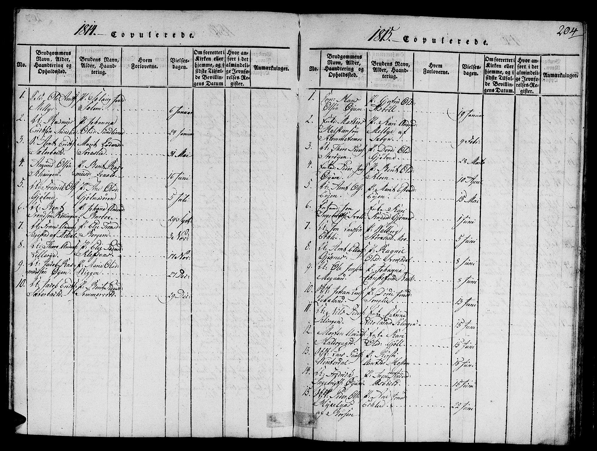 SAT, Ministerialprotokoller, klokkerbøker og fødselsregistre - Sør-Trøndelag, 668/L0803: Ministerialbok nr. 668A03, 1800-1826, s. 204