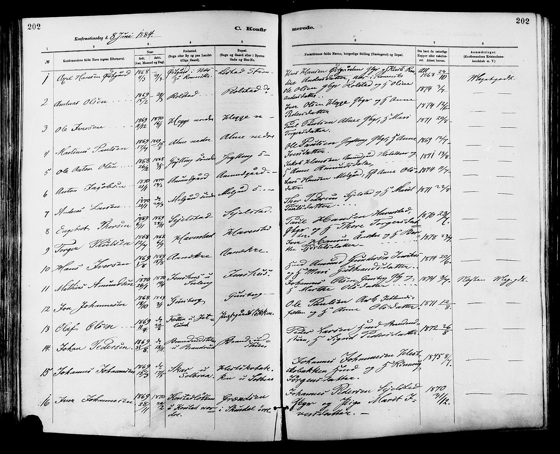SAH, Sør-Fron prestekontor, H/Ha/Haa/L0003: Ministerialbok nr. 3, 1881-1897, s. 202