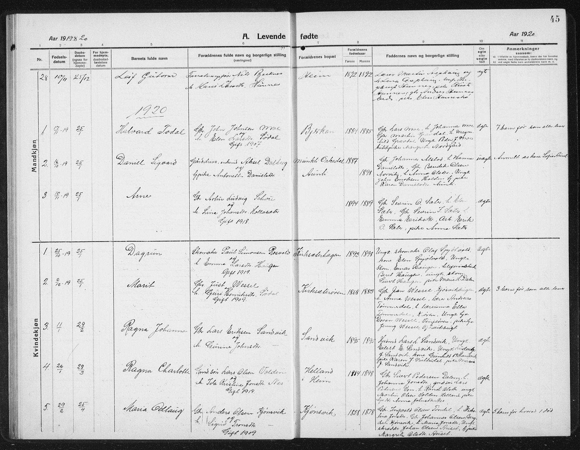 SAT, Ministerialprotokoller, klokkerbøker og fødselsregistre - Sør-Trøndelag, 630/L0506: Klokkerbok nr. 630C04, 1914-1933, s. 45