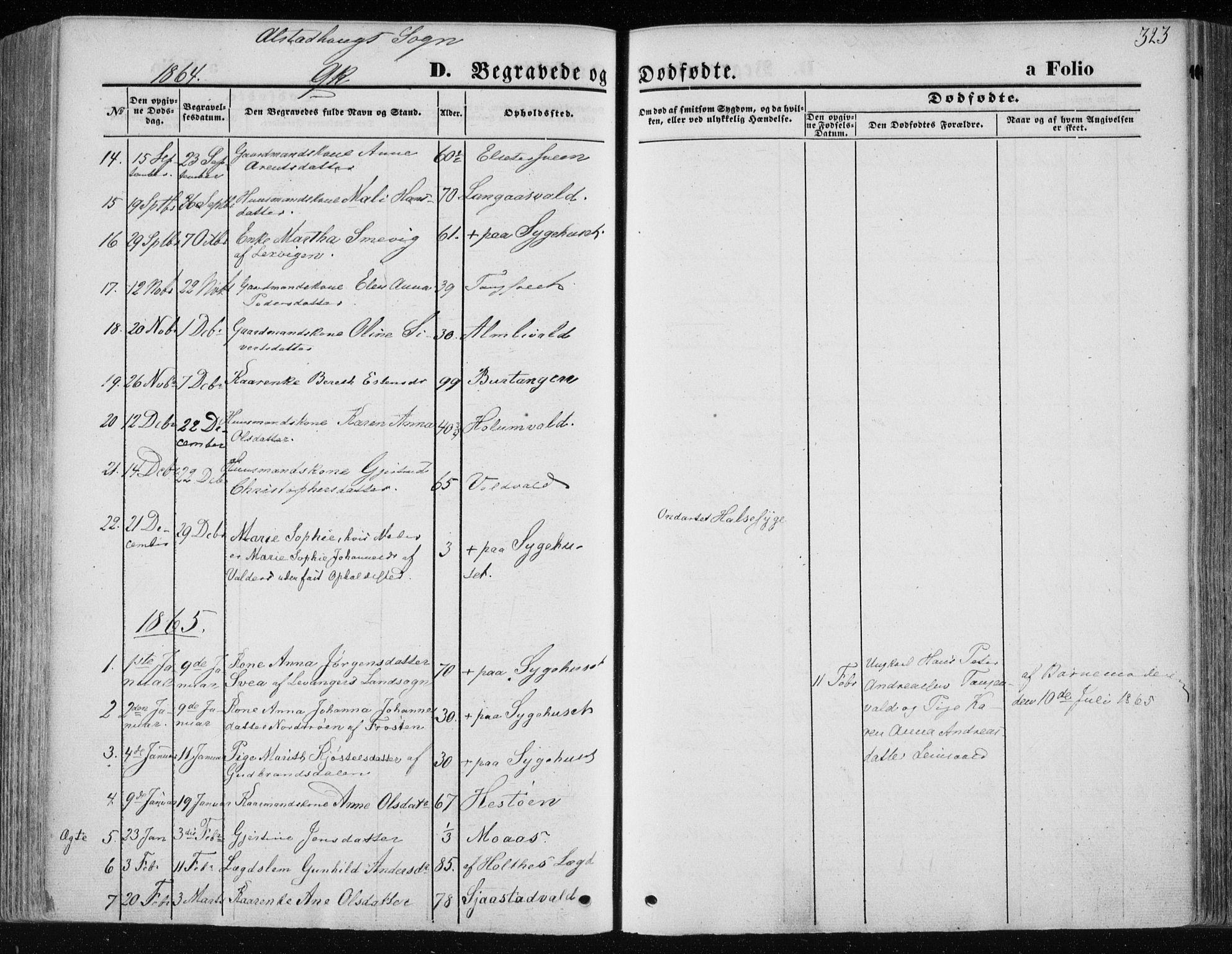 SAT, Ministerialprotokoller, klokkerbøker og fødselsregistre - Nord-Trøndelag, 717/L0157: Ministerialbok nr. 717A08 /1, 1863-1877, s. 323