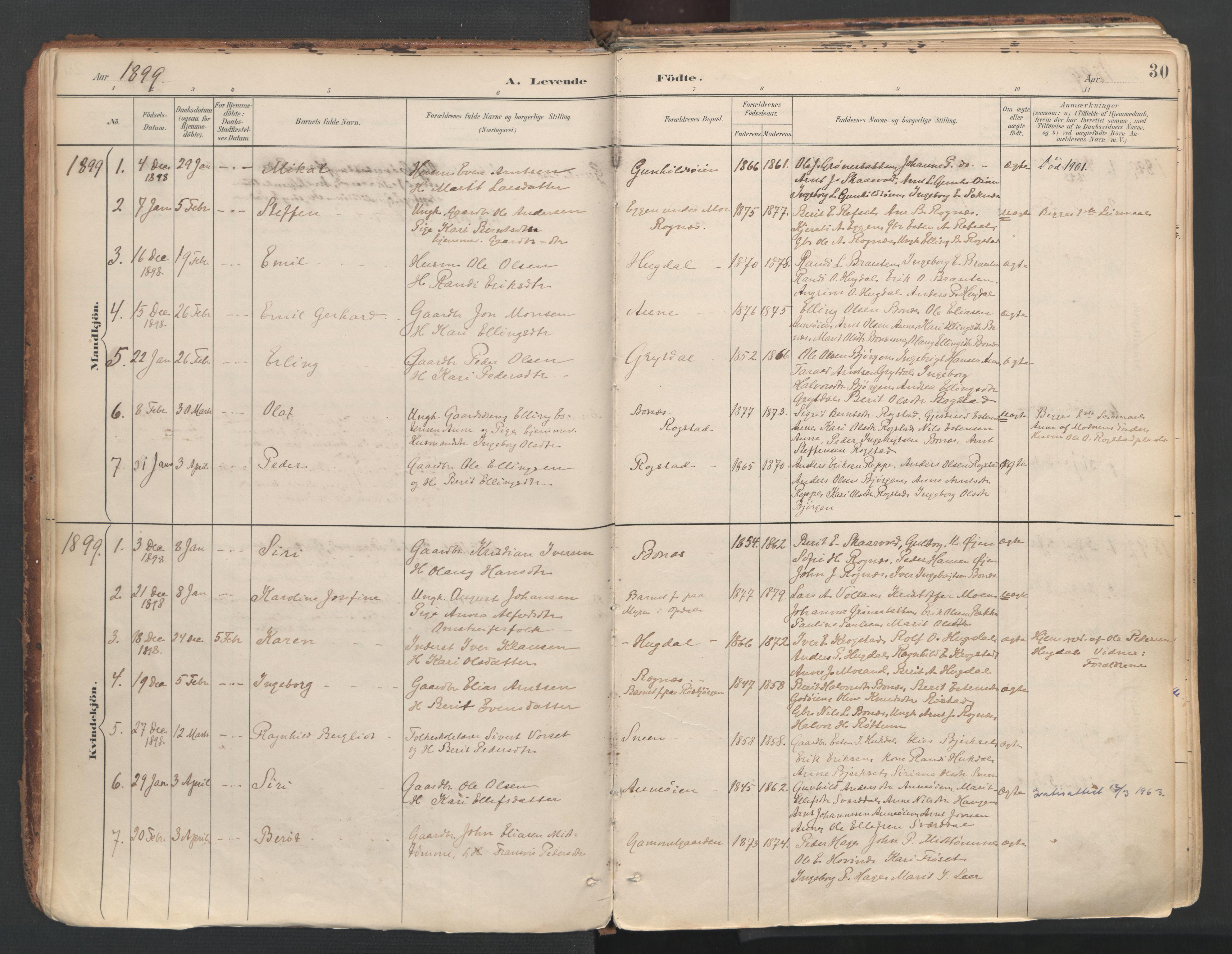 SAT, Ministerialprotokoller, klokkerbøker og fødselsregistre - Sør-Trøndelag, 687/L1004: Ministerialbok nr. 687A10, 1891-1923, s. 30