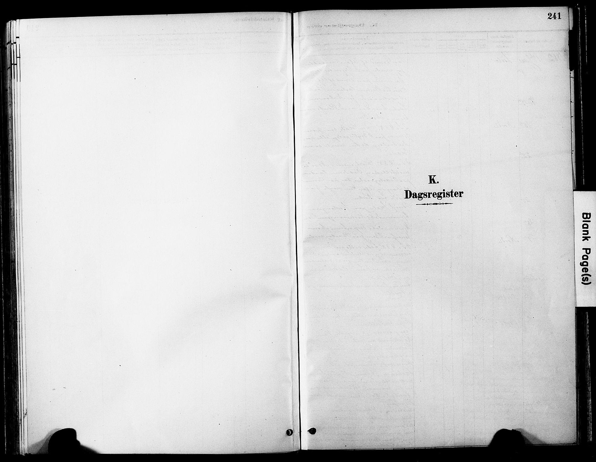 SAT, Ministerialprotokoller, klokkerbøker og fødselsregistre - Nord-Trøndelag, 755/L0494: Ministerialbok nr. 755A03, 1882-1902, s. 241