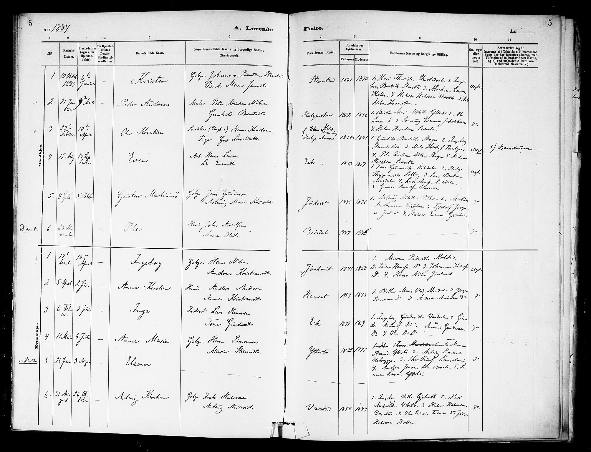 SAKO, Holla kirkebøker, F/Fa/L0009: Ministerialbok nr. 9, 1881-1897, s. 5