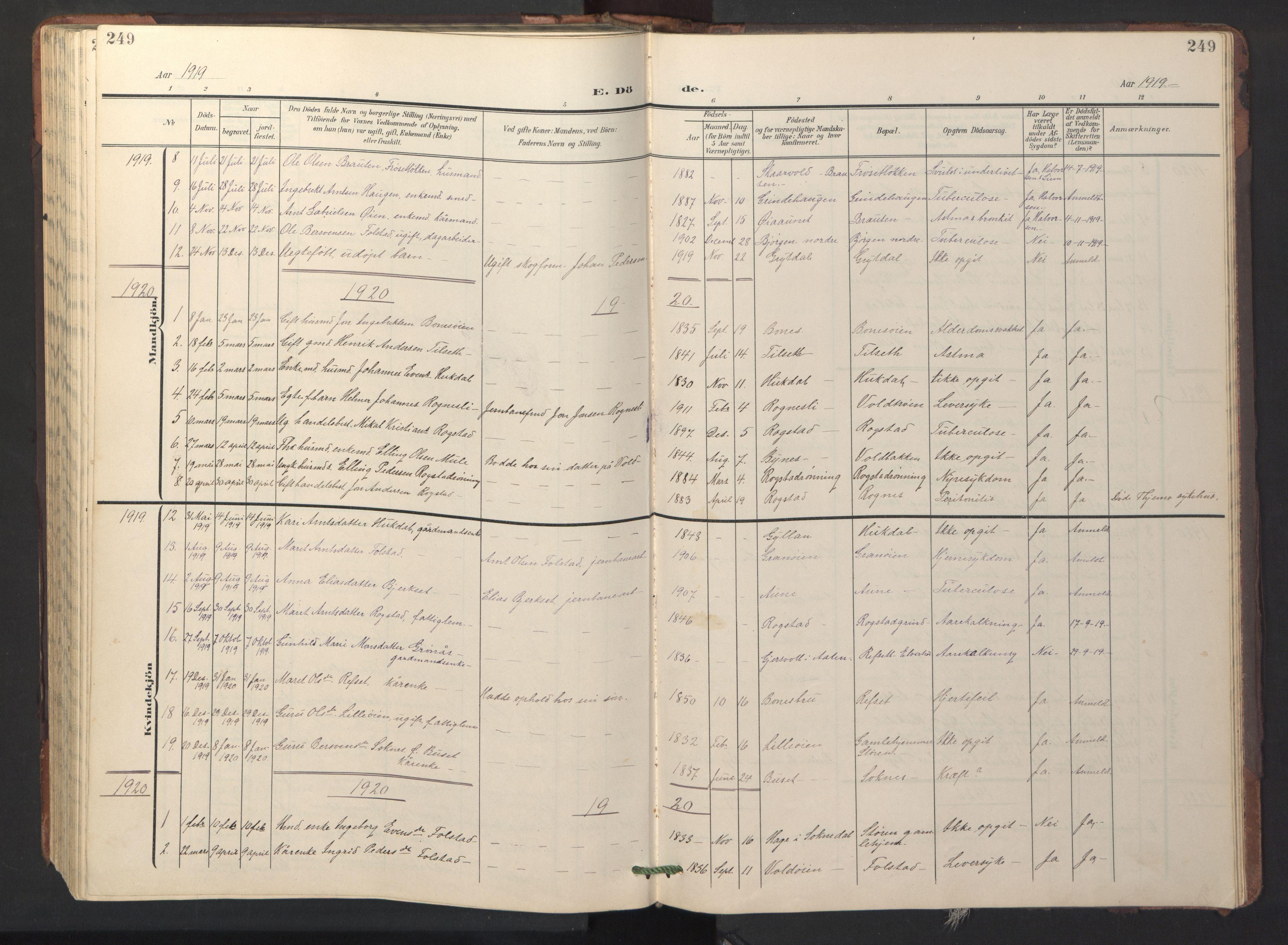 SAT, Ministerialprotokoller, klokkerbøker og fødselsregistre - Sør-Trøndelag, 687/L1019: Klokkerbok nr. 687C03, 1904-1931, s. 249