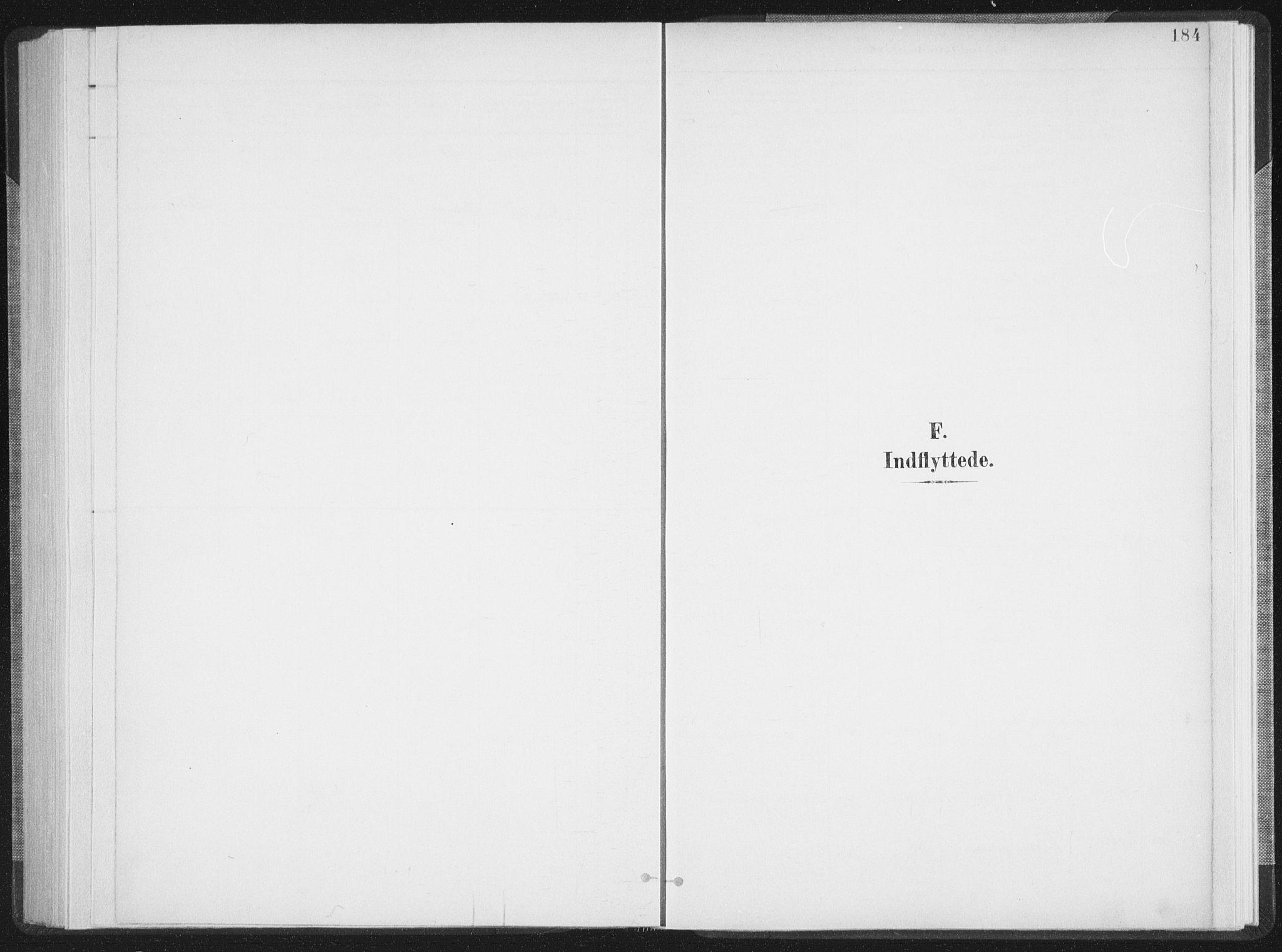SAT, Ministerialprotokoller, klokkerbøker og fødselsregistre - Nordland, 897/L1400: Ministerialbok nr. 897A07, 1897-1908, s. 184