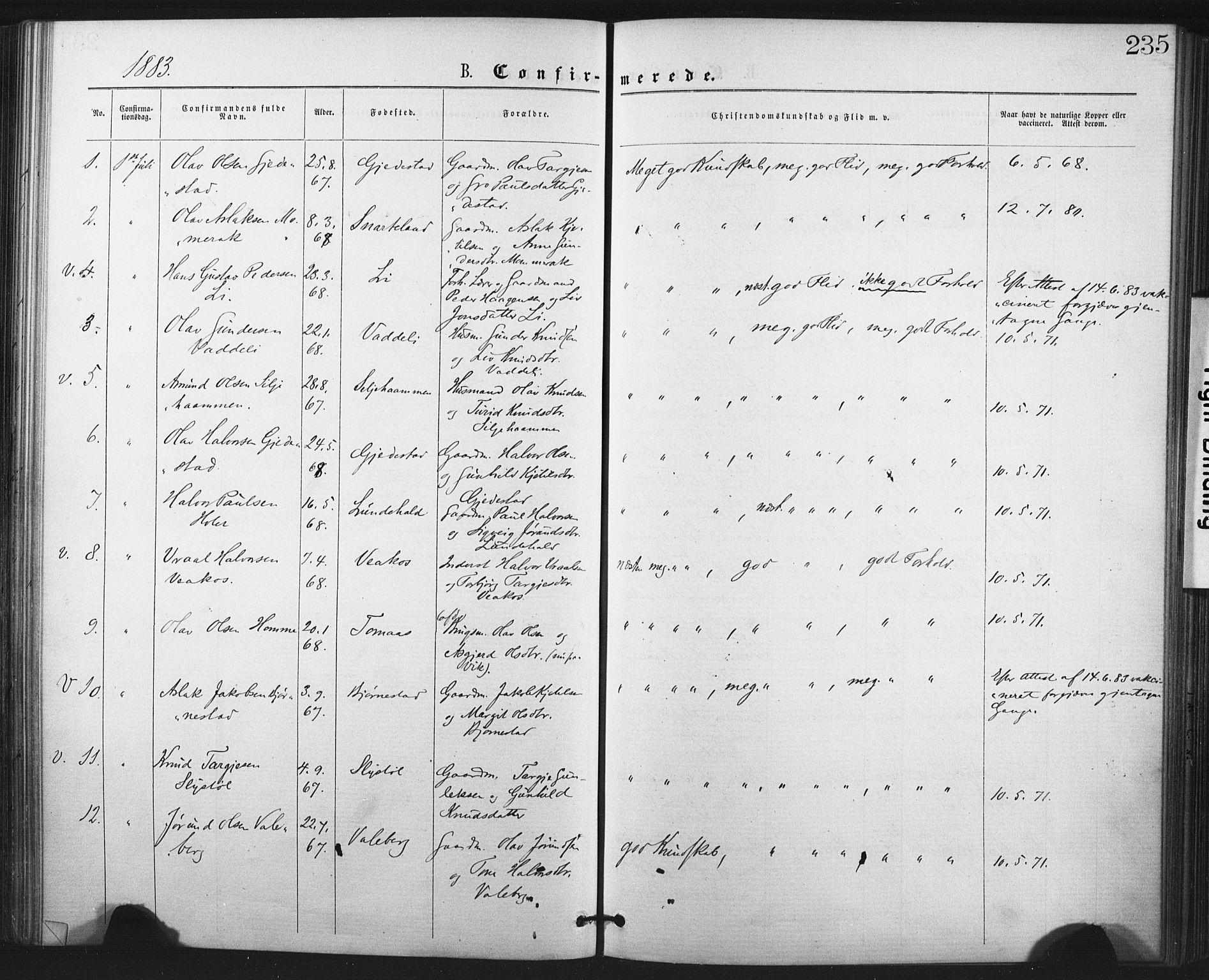 SAKO, Fyresdal kirkebøker, F/Fa/L0006: Ministerialbok nr. I 6, 1872-1886, s. 235