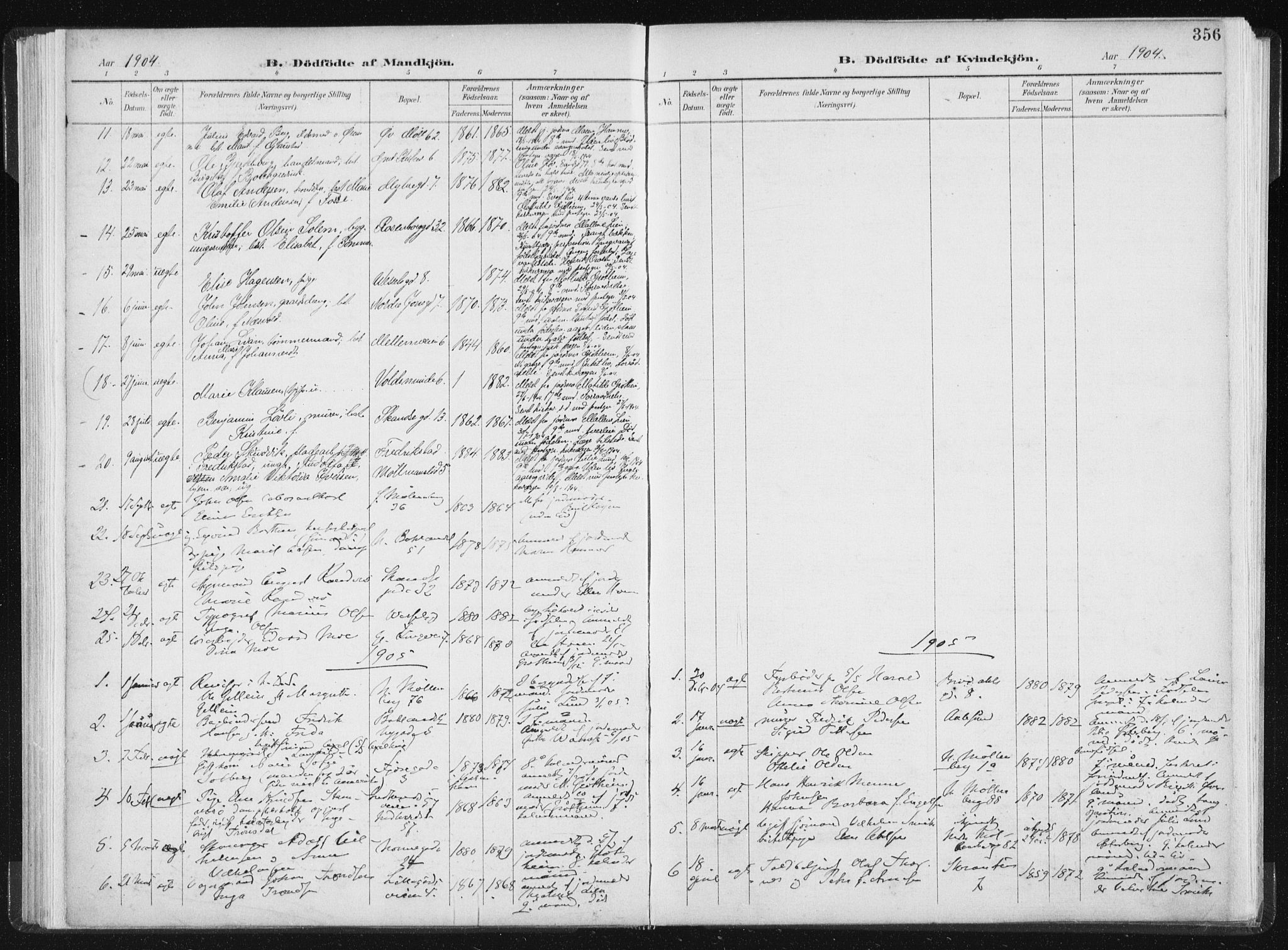 SAT, Ministerialprotokoller, klokkerbøker og fødselsregistre - Sør-Trøndelag, 604/L0200: Ministerialbok nr. 604A20II, 1901-1908, s. 356