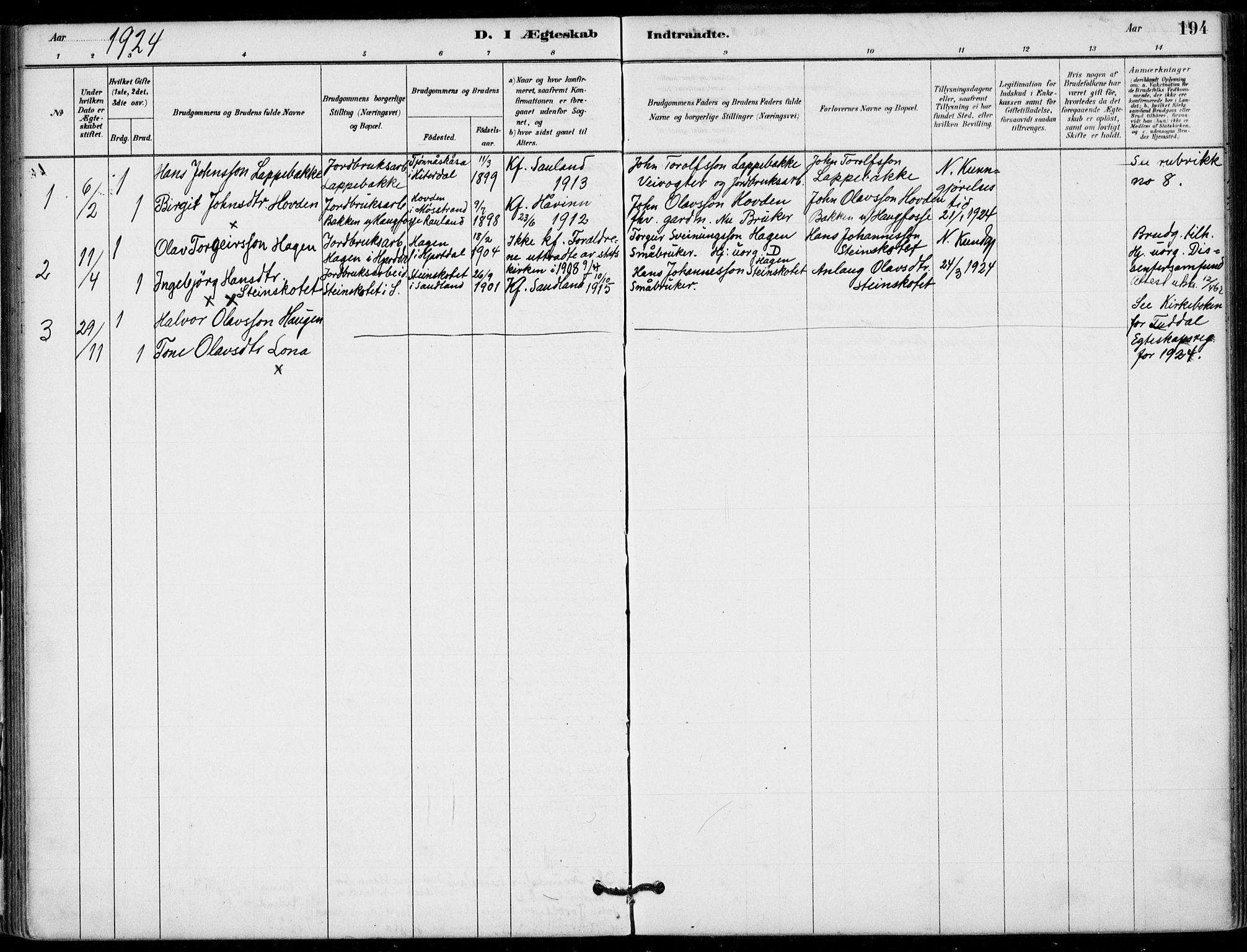 SAKO, Hjartdal kirkebøker, F/Fb/L0002: Ministerialbok nr. II 2, 1880-1932, s. 194