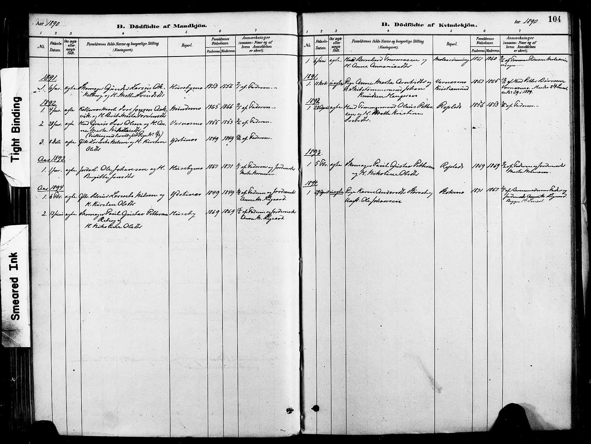 SAT, Ministerialprotokoller, klokkerbøker og fødselsregistre - Nord-Trøndelag, 709/L0077: Ministerialbok nr. 709A17, 1880-1895, s. 104