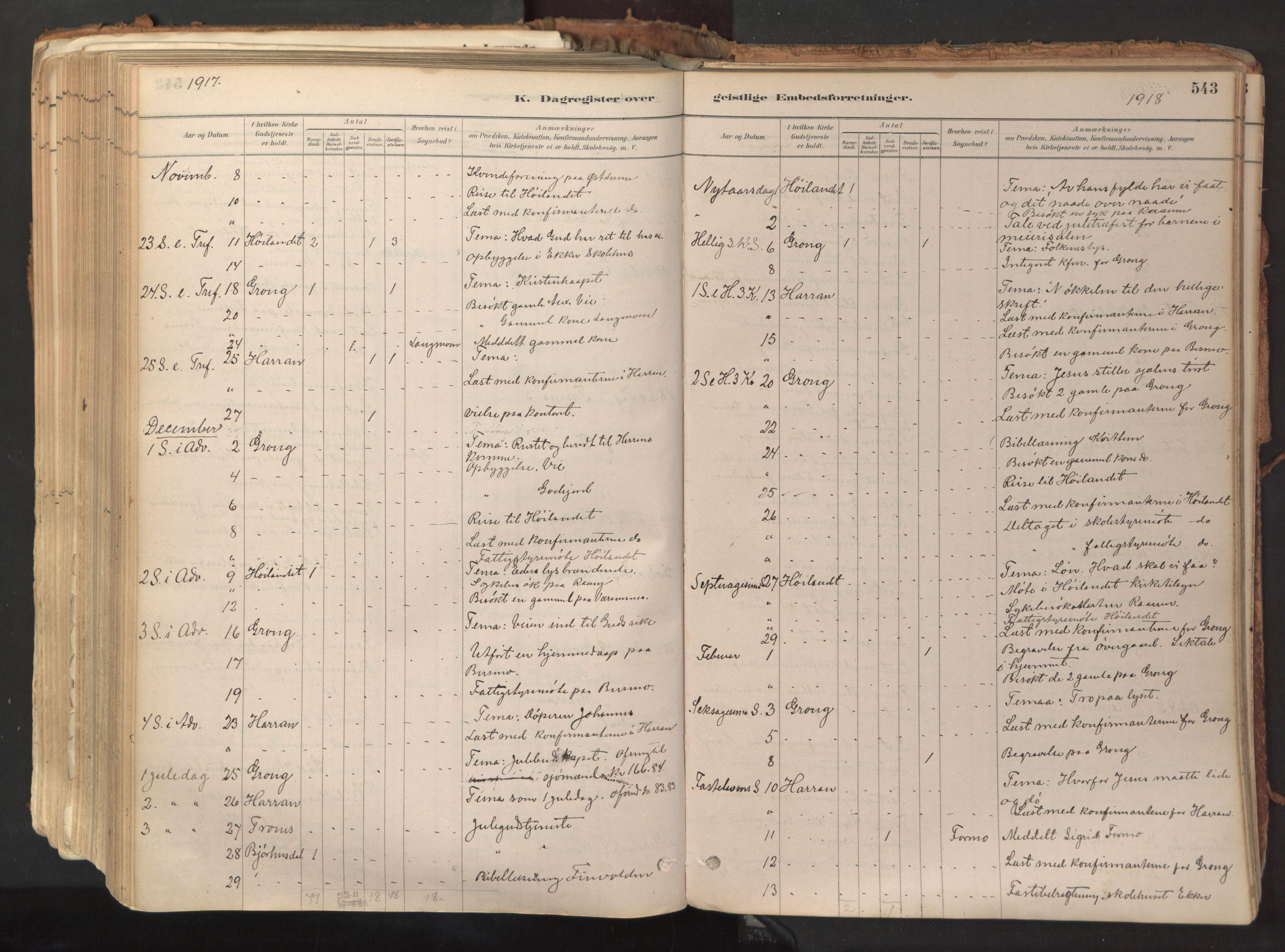 SAT, Ministerialprotokoller, klokkerbøker og fødselsregistre - Nord-Trøndelag, 758/L0519: Ministerialbok nr. 758A04, 1880-1926, s. 543