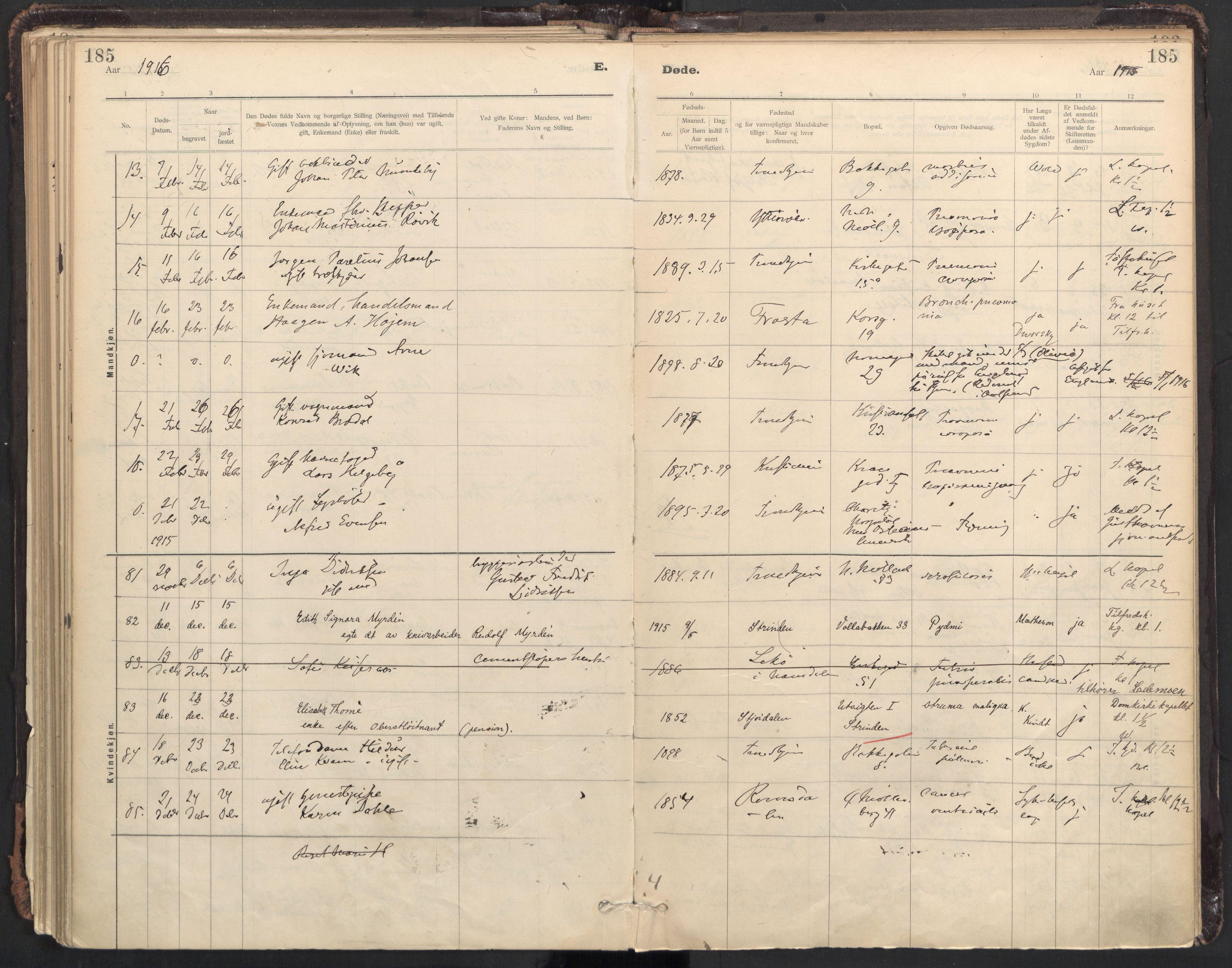 SAT, Ministerialprotokoller, klokkerbøker og fødselsregistre - Sør-Trøndelag, 604/L0204: Ministerialbok nr. 604A24, 1911-1920, s. 185