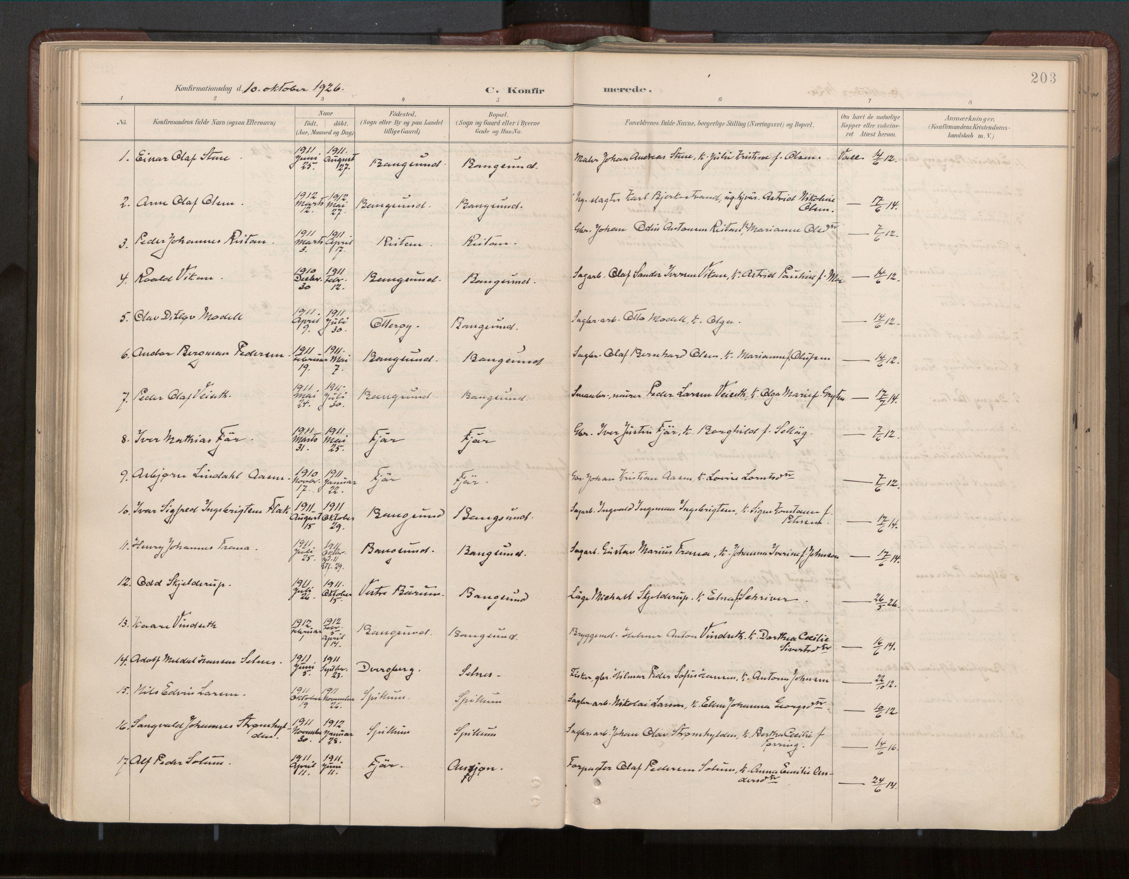 SAT, Ministerialprotokoller, klokkerbøker og fødselsregistre - Nord-Trøndelag, 770/L0589: Ministerialbok nr. 770A03, 1887-1929, s. 203