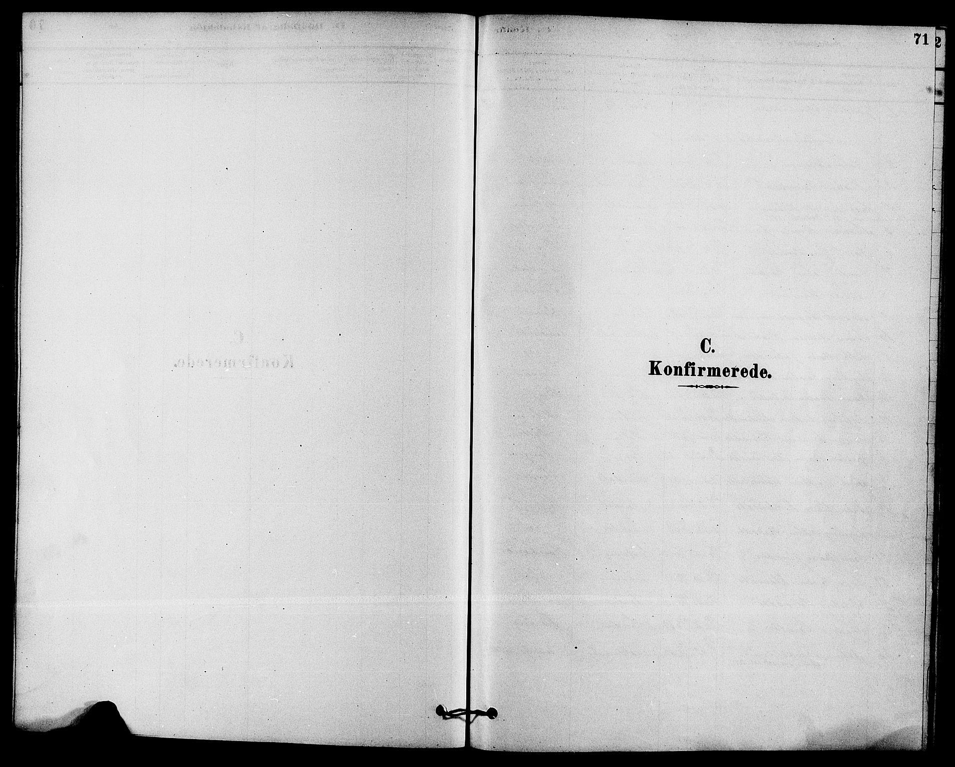 SAKO, Solum kirkebøker, F/Fb/L0001: Ministerialbok nr. II 1, 1877-1892, s. 71