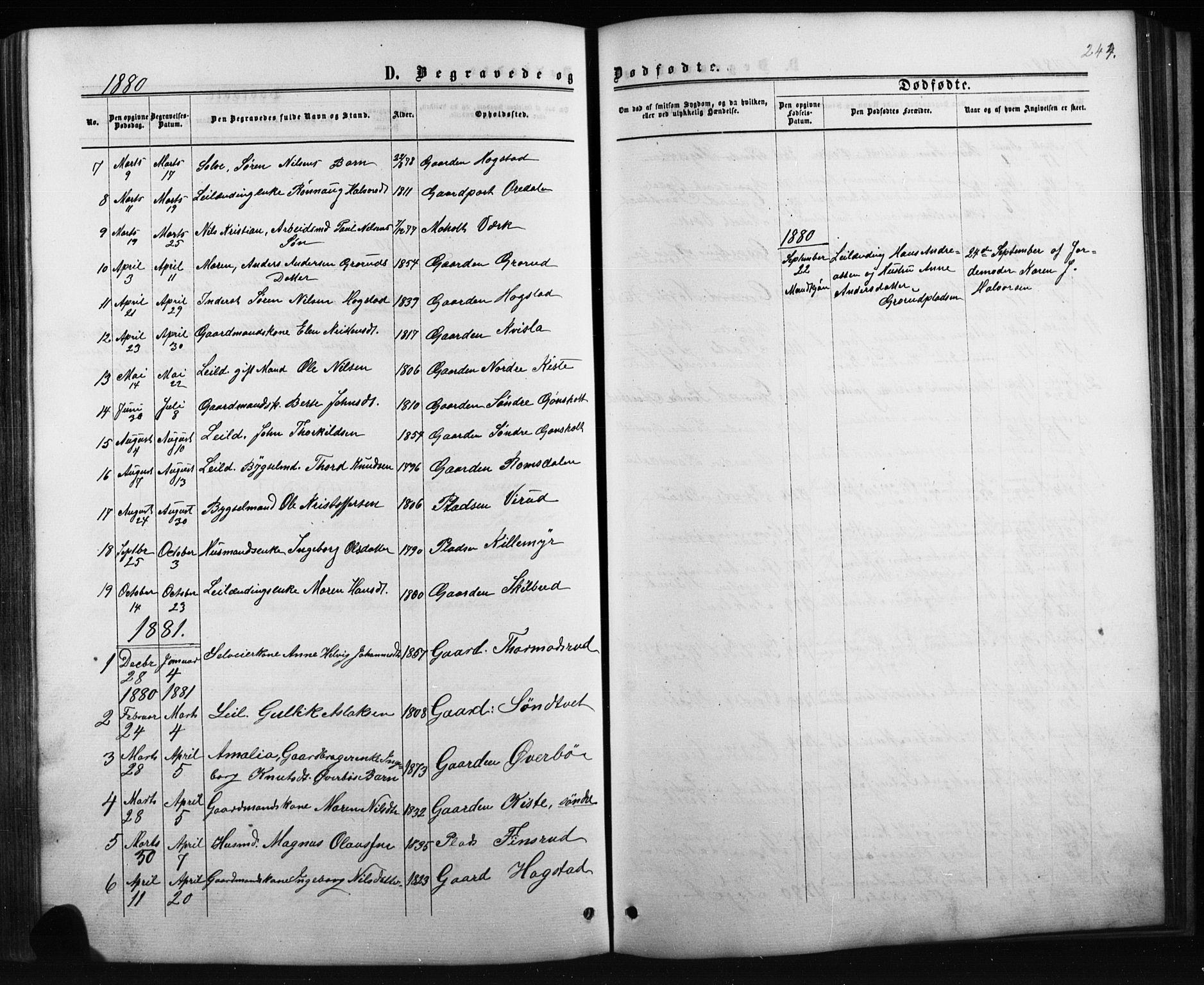 SAKO, Siljan kirkebøker, G/Ga/L0002: Klokkerbok nr. 2, 1864-1908, s. 244