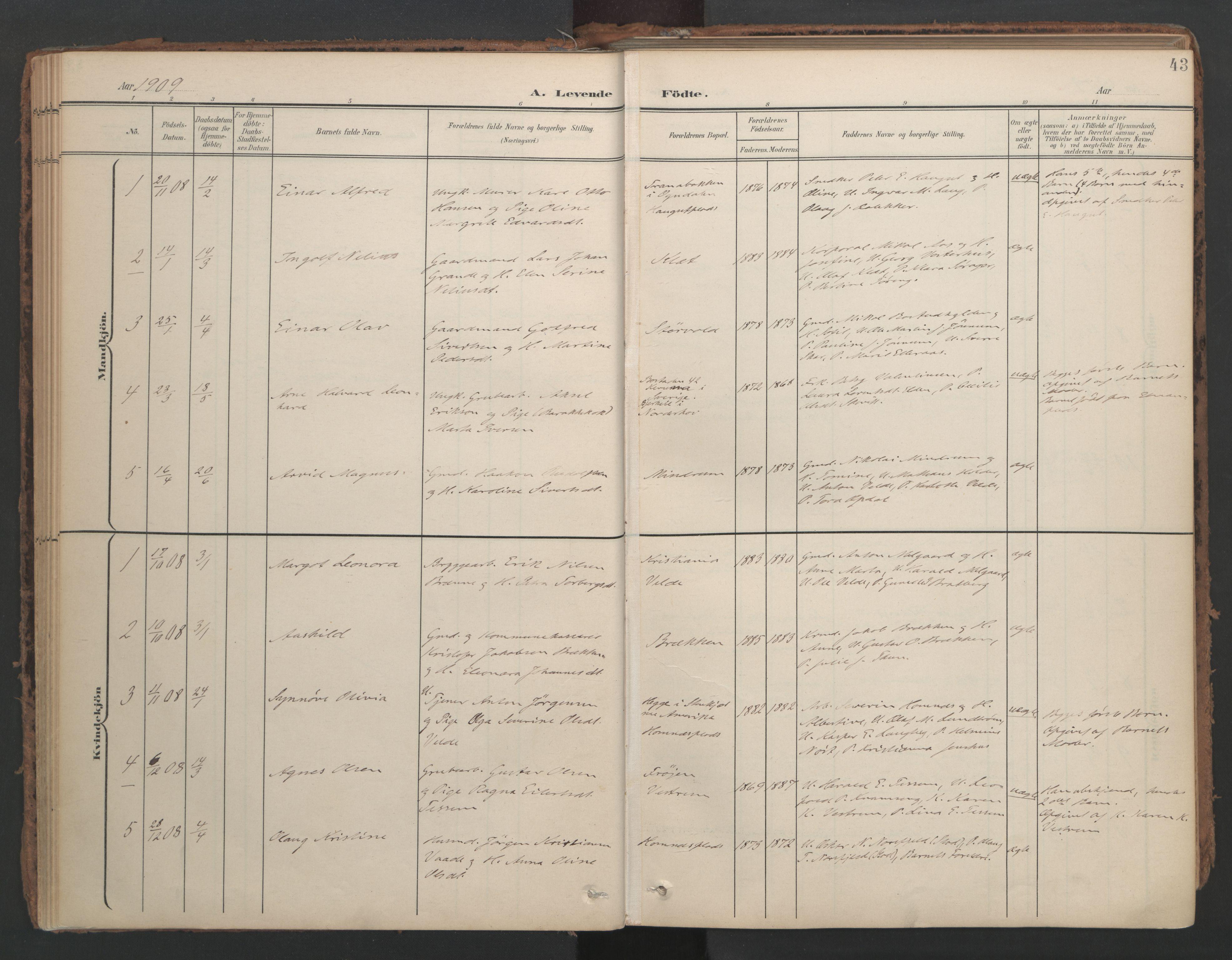 SAT, Ministerialprotokoller, klokkerbøker og fødselsregistre - Nord-Trøndelag, 741/L0397: Ministerialbok nr. 741A11, 1901-1911, s. 43