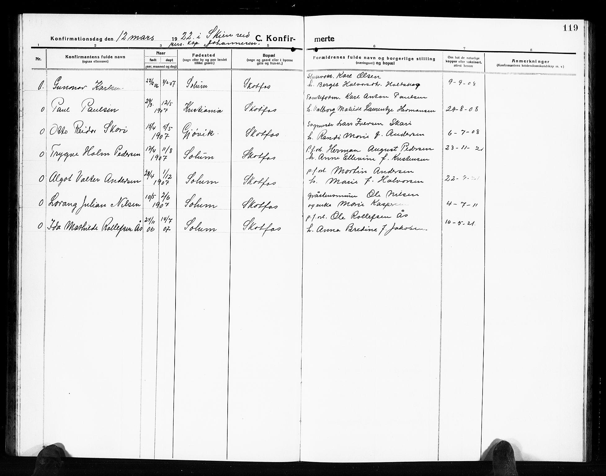 SAKO, Solum kirkebøker, G/Gb/L0006: Klokkerbok nr. II 6, 1915-1927, s. 119