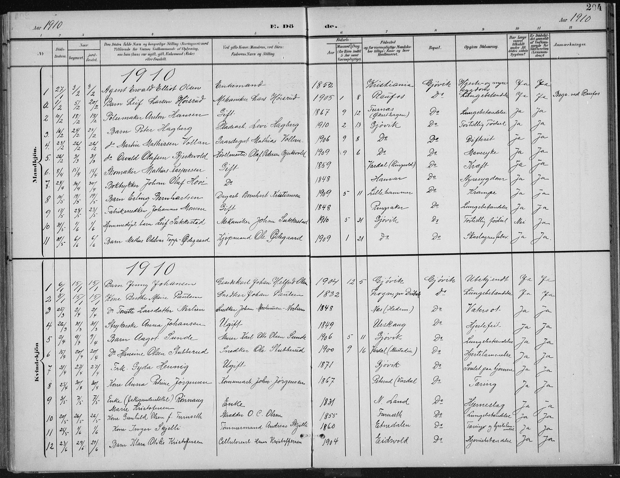 SAH, Vardal prestekontor, H/Ha/Haa/L0013: Ministerialbok nr. 13, 1901-1911, s. 204