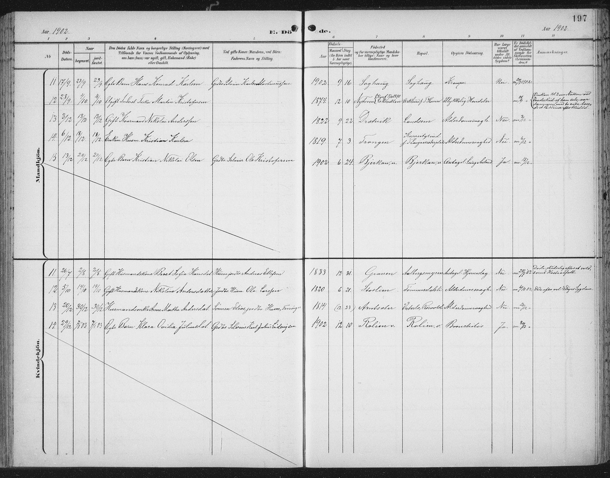 SAT, Ministerialprotokoller, klokkerbøker og fødselsregistre - Nord-Trøndelag, 701/L0011: Ministerialbok nr. 701A11, 1899-1915, s. 197