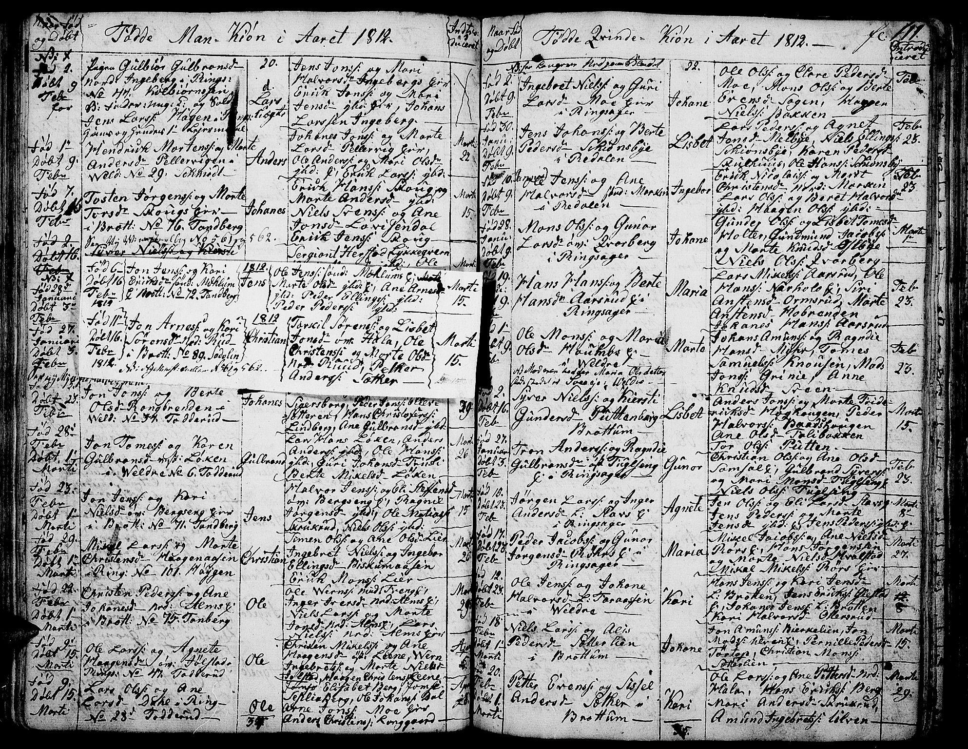 SAH, Ringsaker prestekontor, K/Ka/L0004: Ministerialbok nr. 4, 1799-1814, s. 111