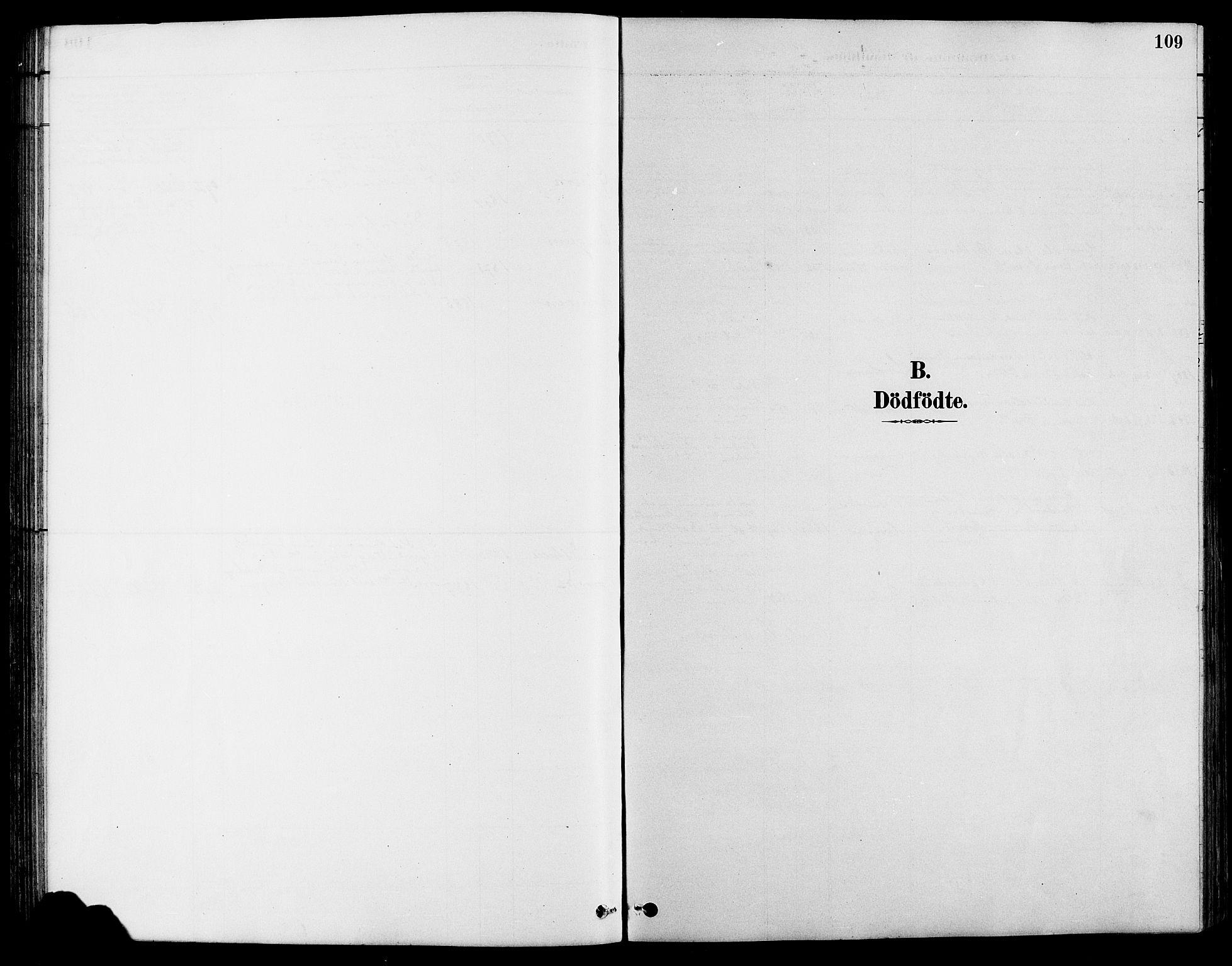 SAH, Nord-Fron prestekontor, Klokkerbok nr. 4, 1884-1914, s. 109