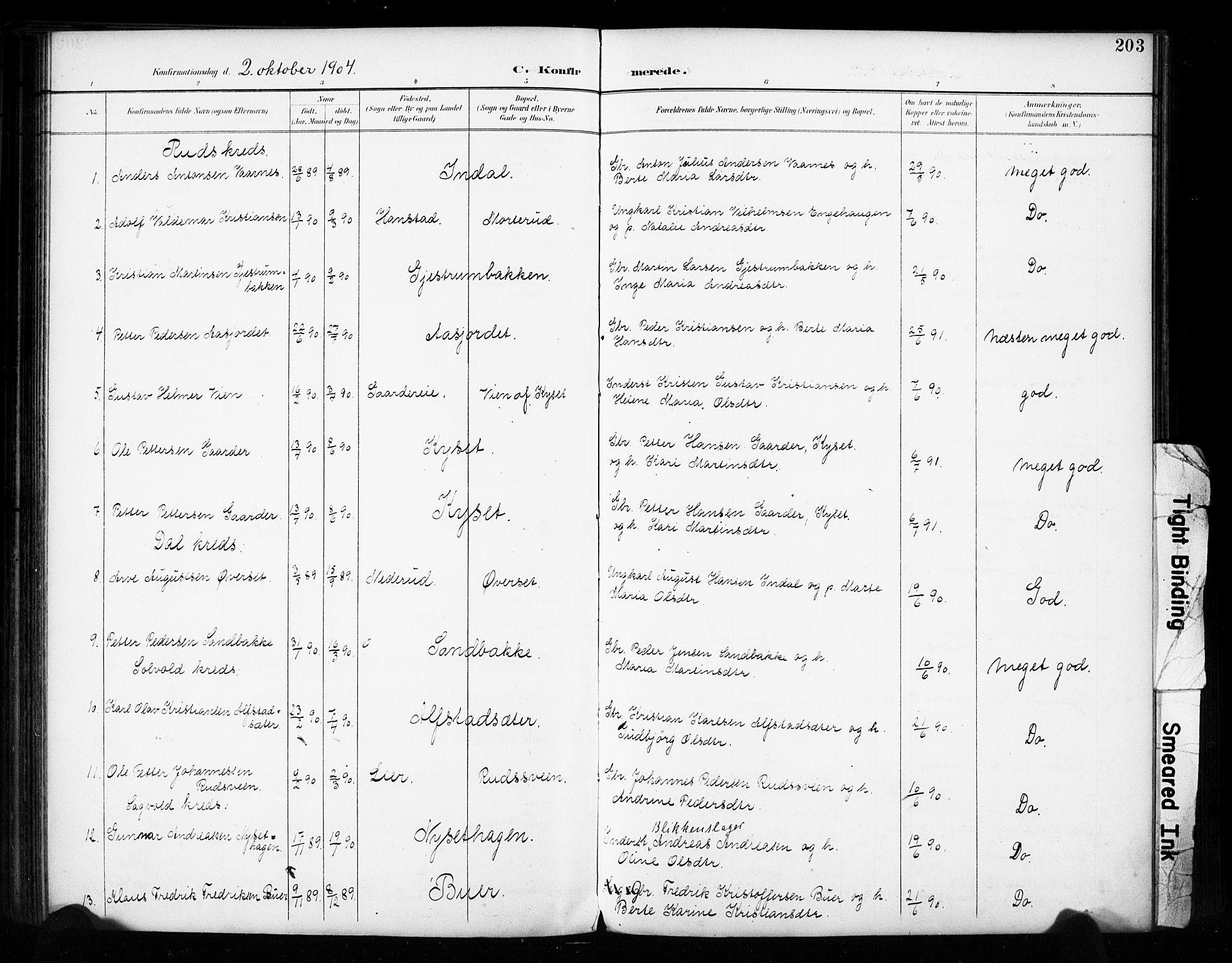 SAH, Vestre Toten prestekontor, Ministerialbok nr. 11, 1895-1906, s. 203