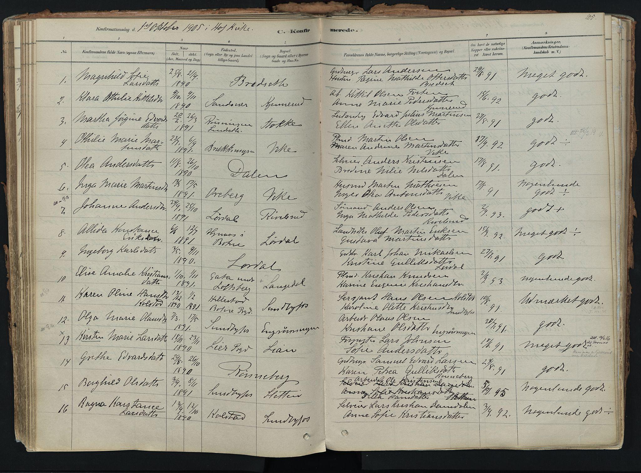 SAKO, Hof kirkebøker, F/Fa/L0007: Ministerialbok nr. I 7, 1878-1940, s. 205