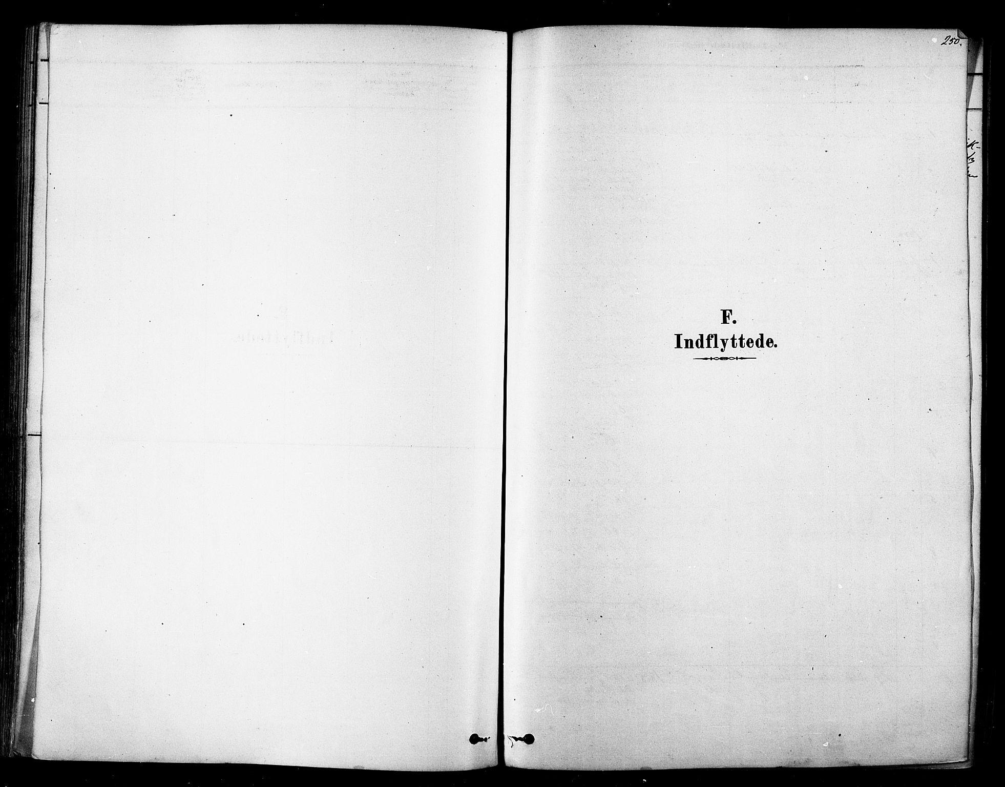 SATØ, Tana sokneprestkontor, H/Ha/L0004kirke: Ministerialbok nr. 4, 1878-1891, s. 250