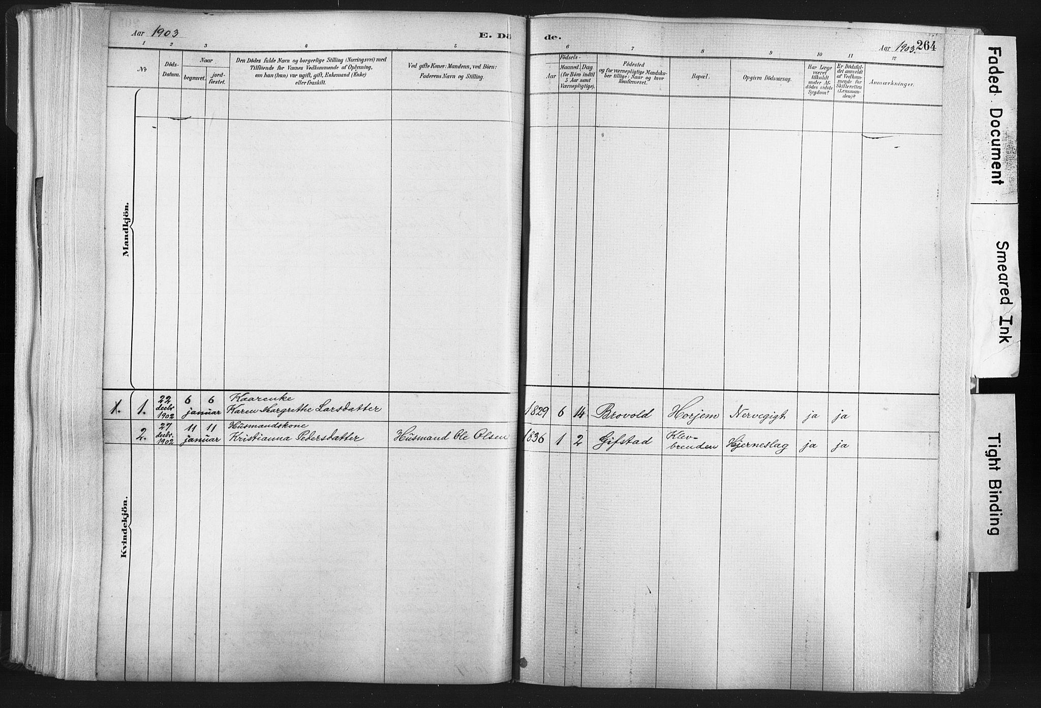 SAT, Ministerialprotokoller, klokkerbøker og fødselsregistre - Nord-Trøndelag, 749/L0474: Ministerialbok nr. 749A08, 1887-1903, s. 264