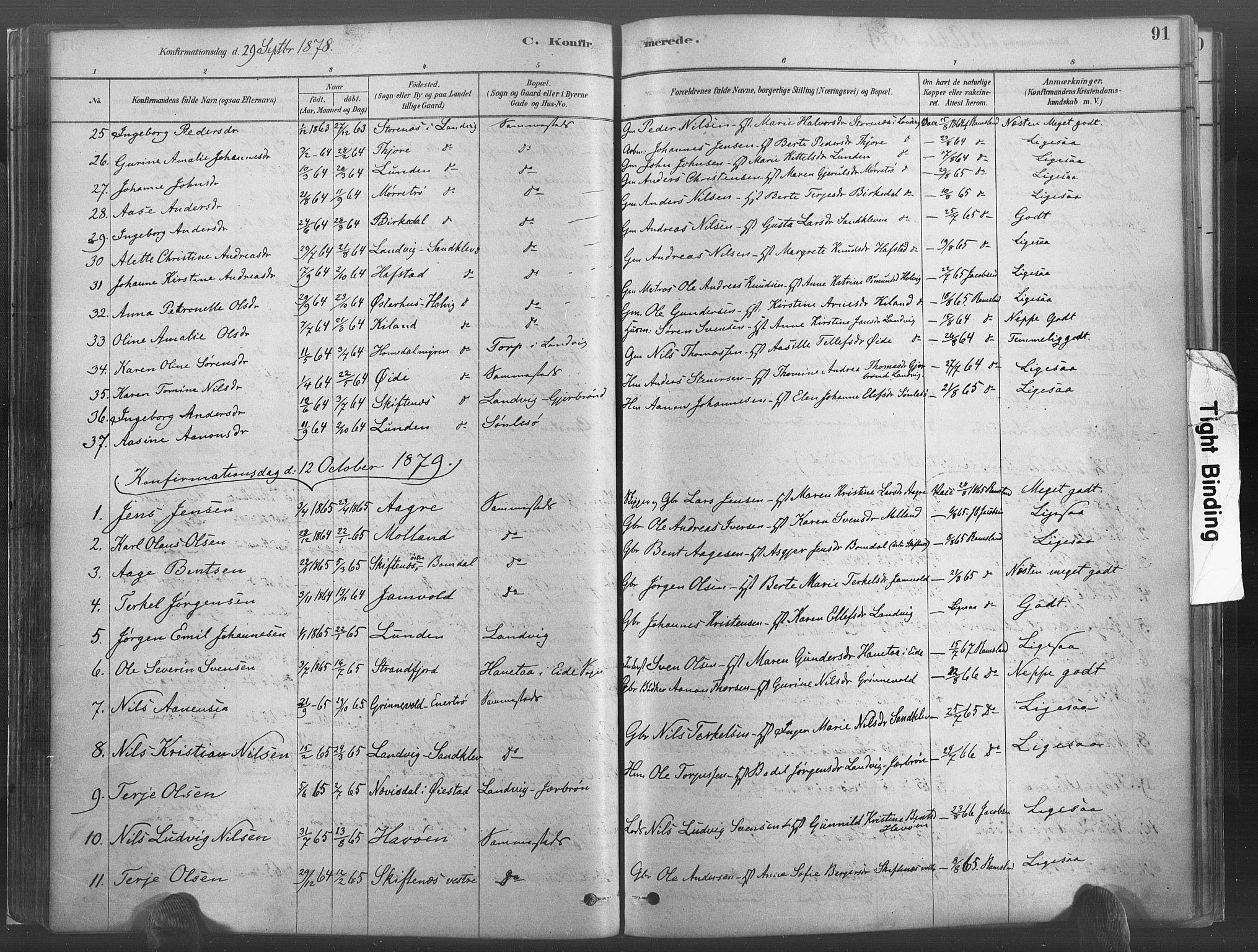 SAK, Hommedal sokneprestkontor, F/Fa/Fab/L0006: Ministerialbok nr. A 6, 1878-1897, s. 91