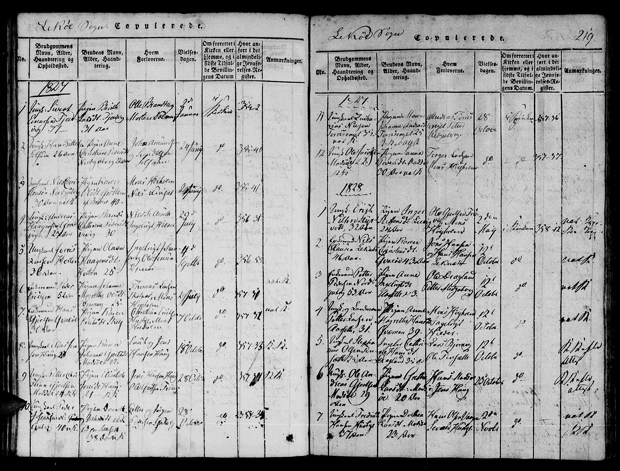 SAT, Ministerialprotokoller, klokkerbøker og fødselsregistre - Nord-Trøndelag, 780/L0636: Ministerialbok nr. 780A03 /2, 1815-1829, s. 219