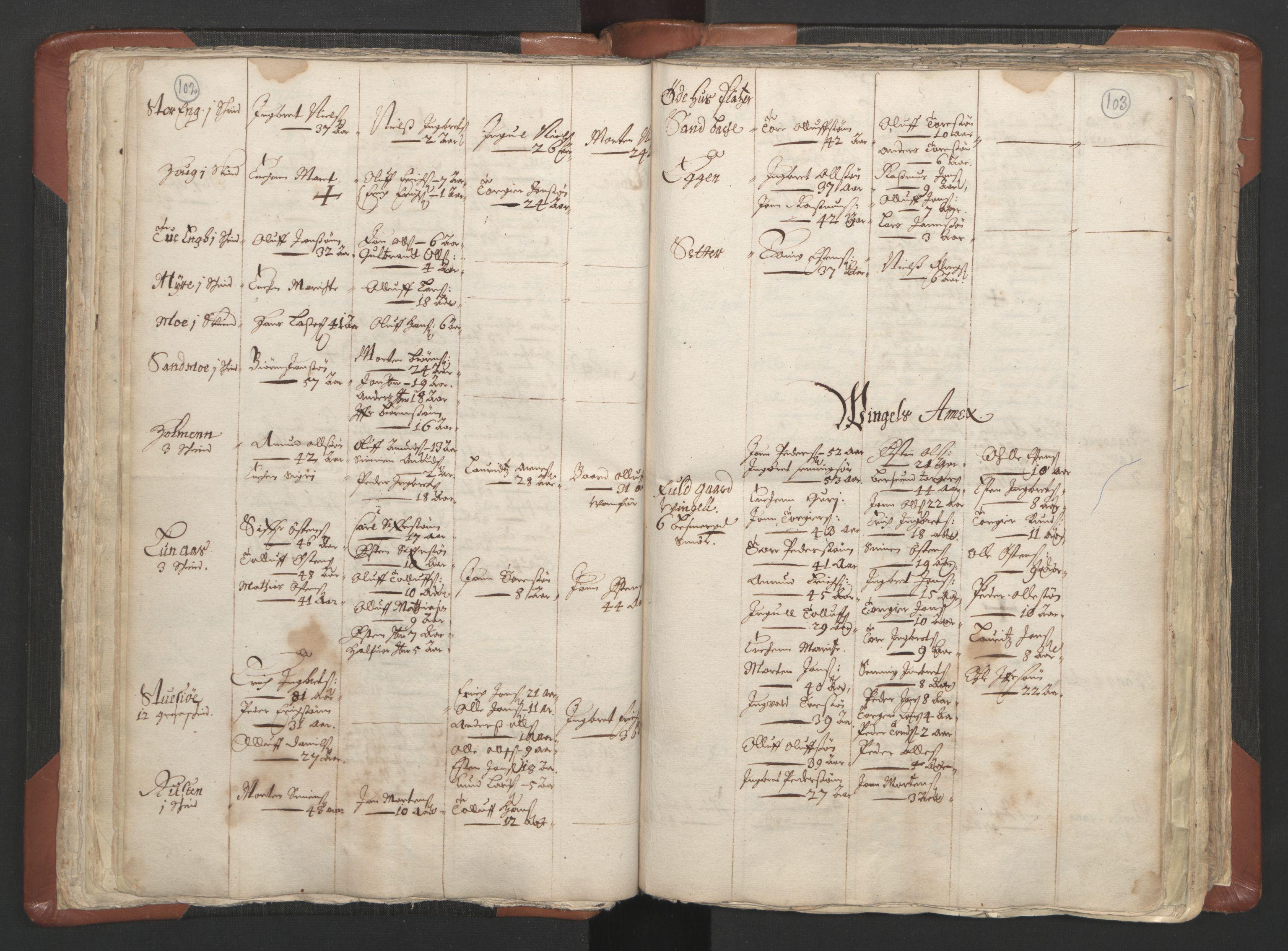 RA, Sogneprestenes manntall 1664-1666, nr. 5: Hedmark prosti, 1664-1666, s. 102-103