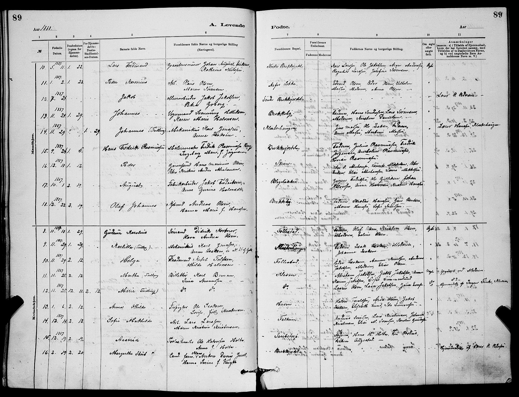 SAKO, Skien kirkebøker, G/Ga/L0006: Klokkerbok nr. 6, 1881-1890, s. 89
