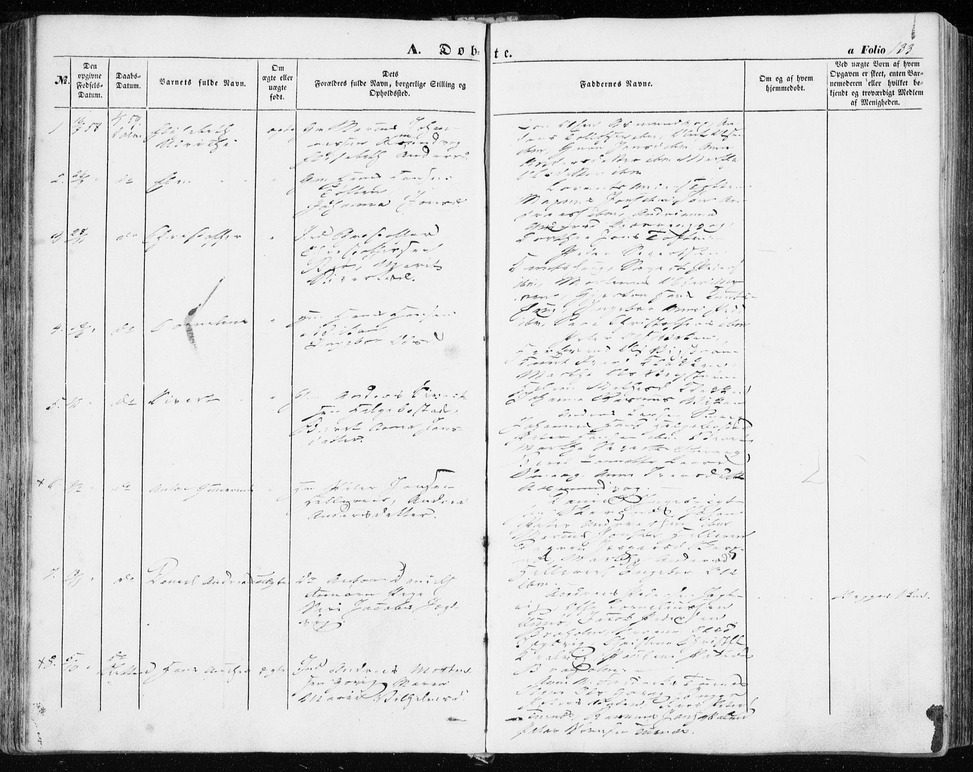 SAT, Ministerialprotokoller, klokkerbøker og fødselsregistre - Sør-Trøndelag, 634/L0530: Ministerialbok nr. 634A06, 1852-1860, s. 133