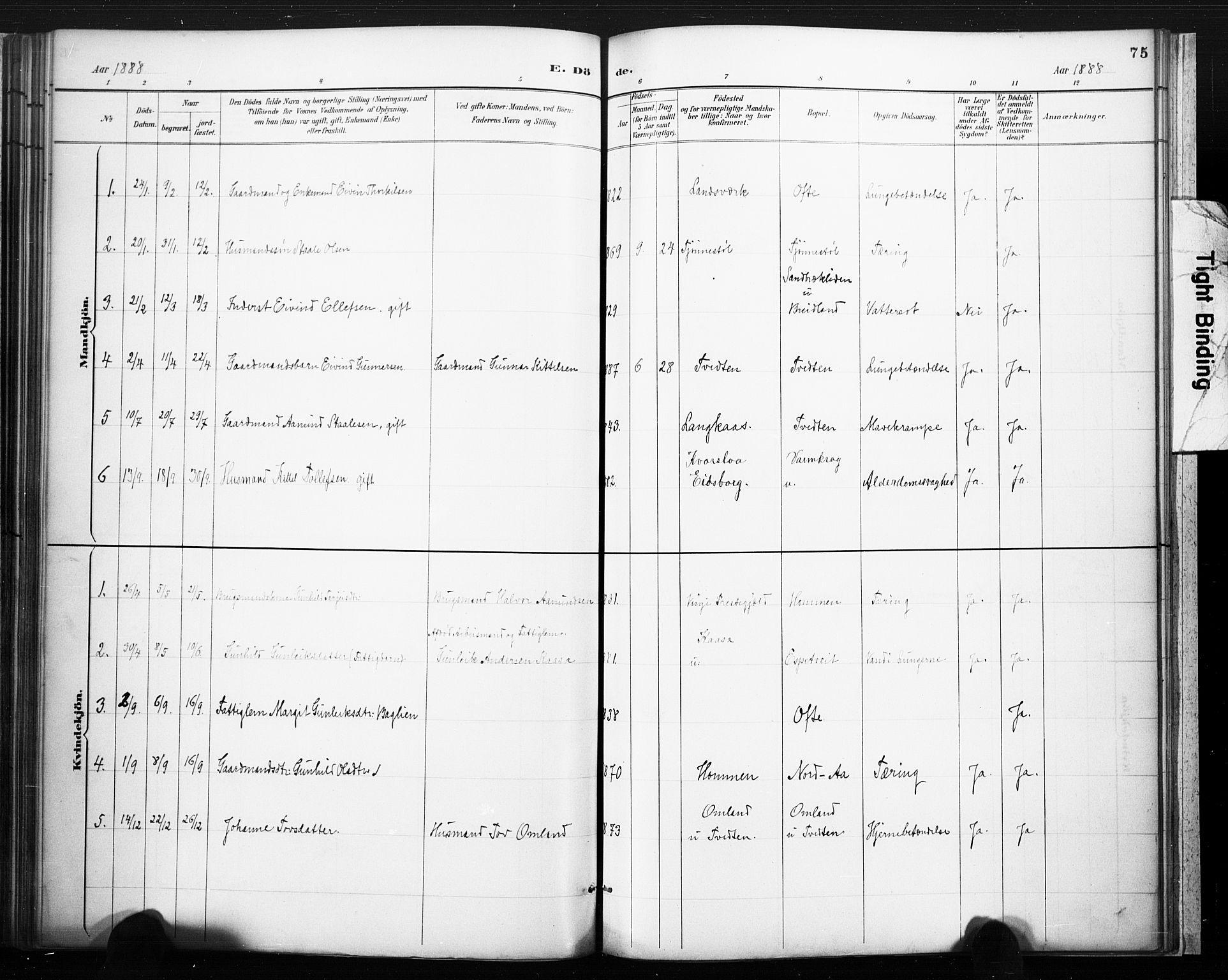 SAKO, Lårdal kirkebøker, F/Fc/L0002: Ministerialbok nr. III 2, 1887-1906, s. 75