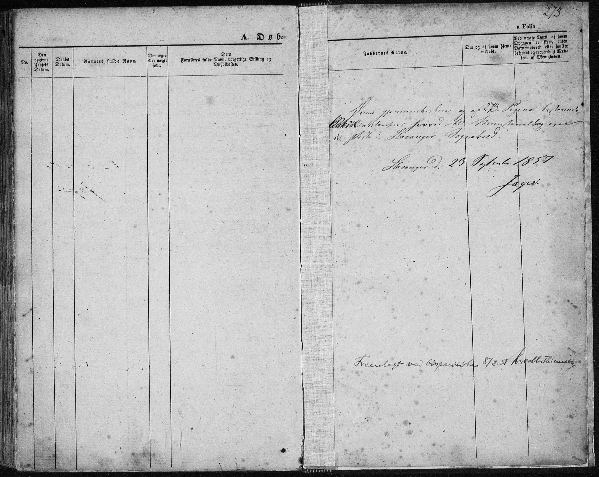 SAST, Domkirken sokneprestkontor, 30/30BA/L0017: Ministerialbok nr. A 16, 1855-1867, s. 273