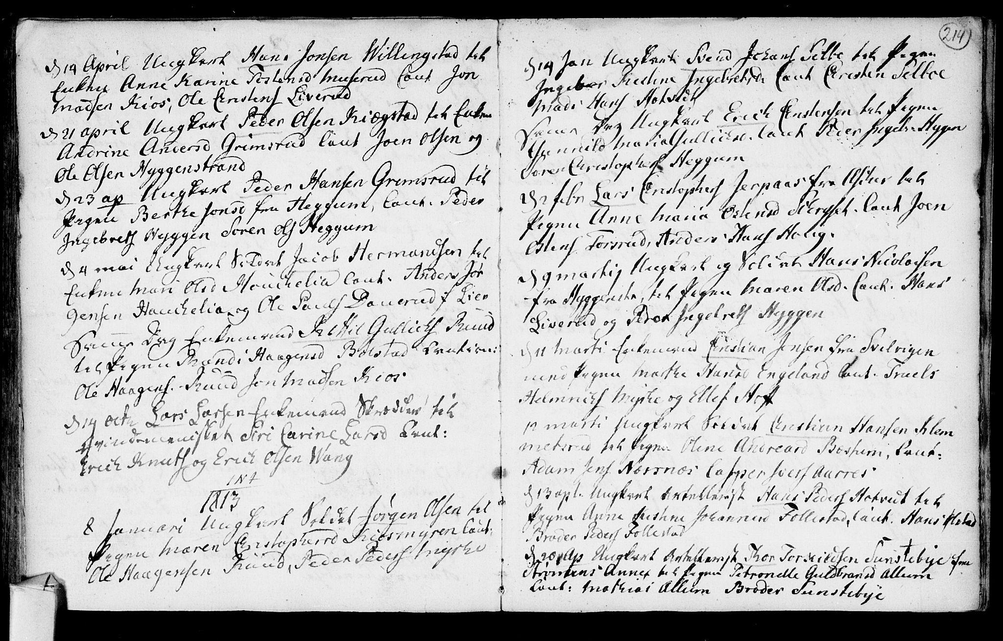 SAKO, Røyken kirkebøker, F/Fa/L0003: Ministerialbok nr. 3, 1782-1813, s. 214