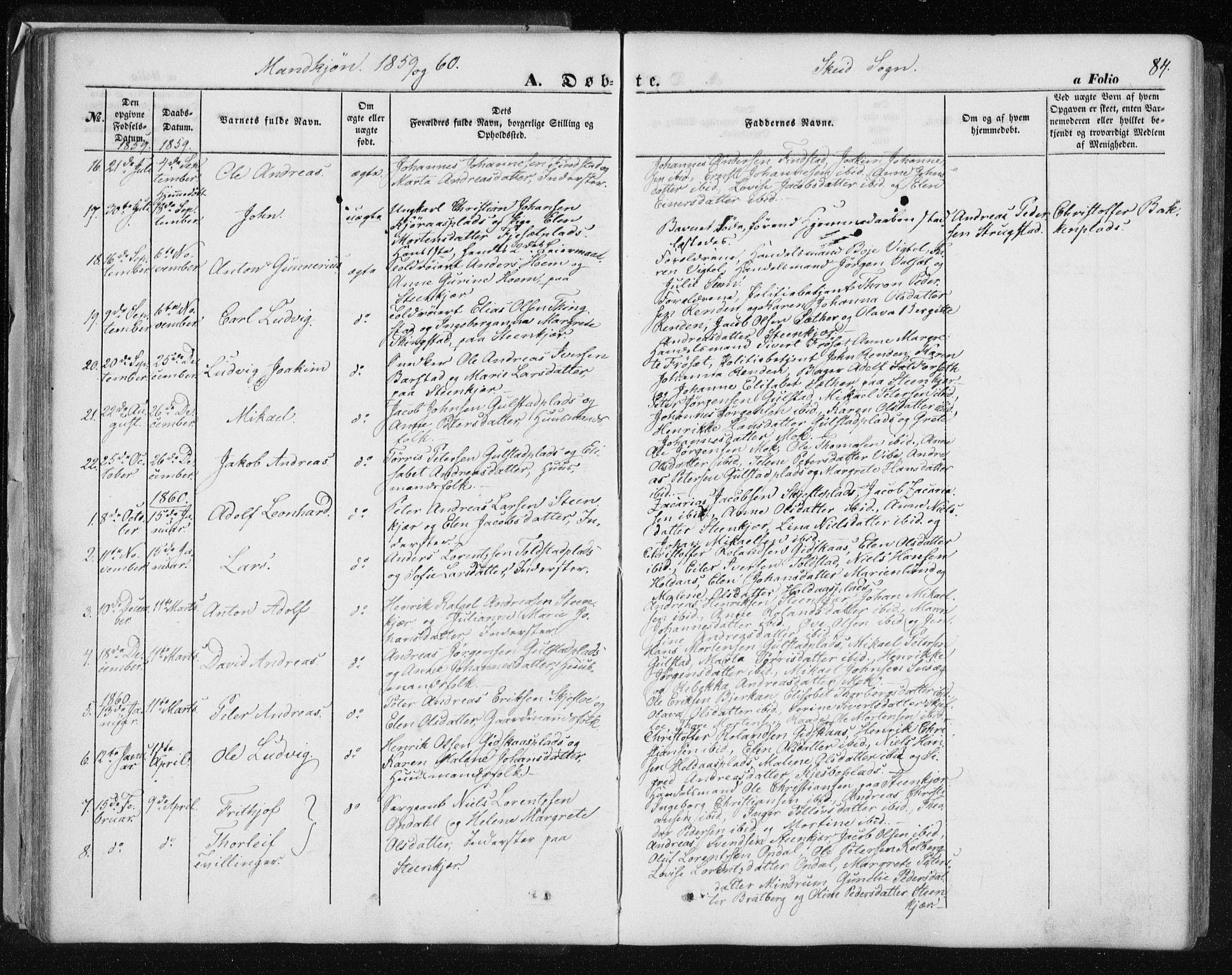 SAT, Ministerialprotokoller, klokkerbøker og fødselsregistre - Nord-Trøndelag, 735/L0342: Ministerialbok nr. 735A07 /2, 1849-1862, s. 84