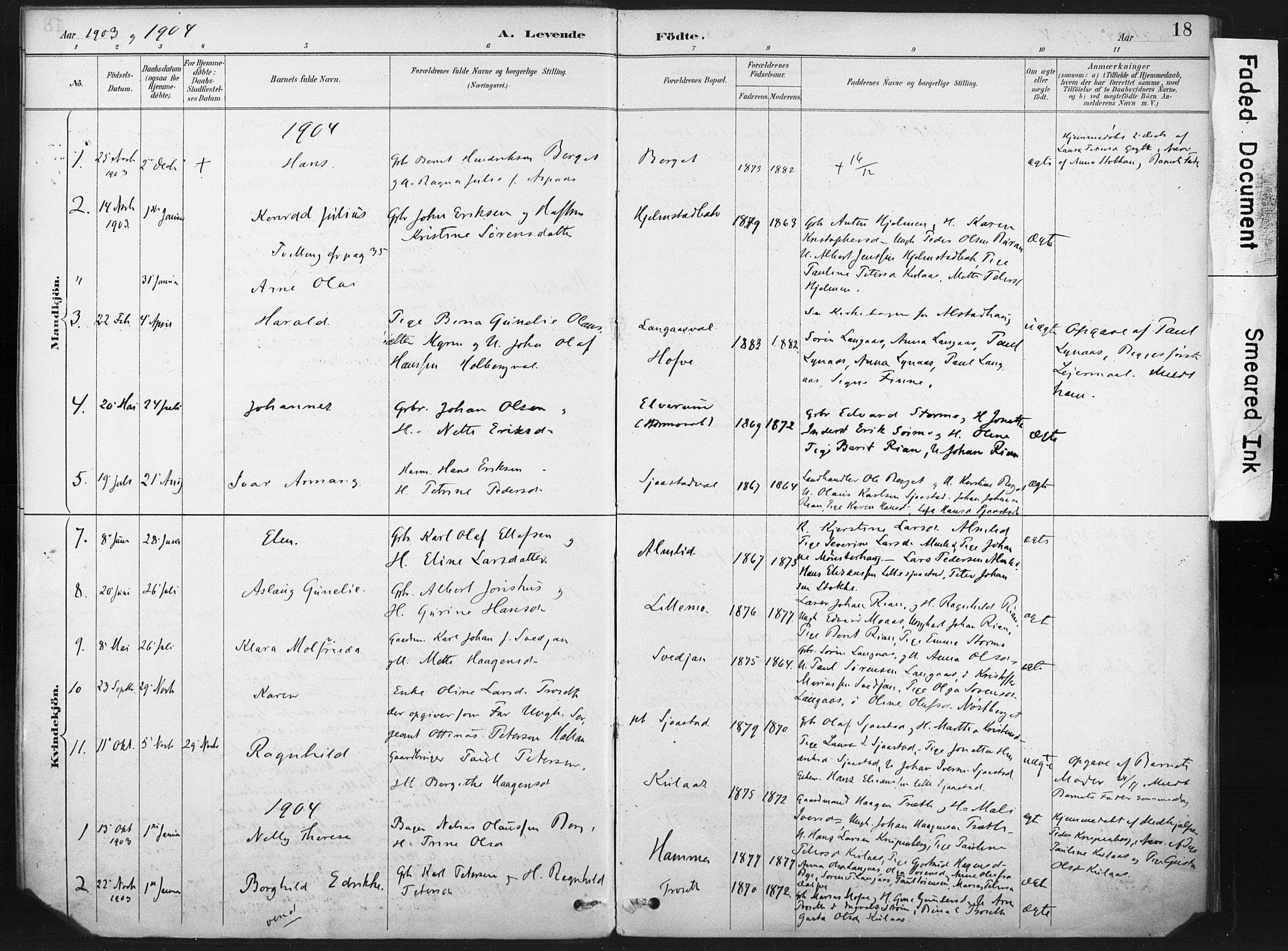 SAT, Ministerialprotokoller, klokkerbøker og fødselsregistre - Nord-Trøndelag, 718/L0175: Ministerialbok nr. 718A01, 1890-1923, s. 18