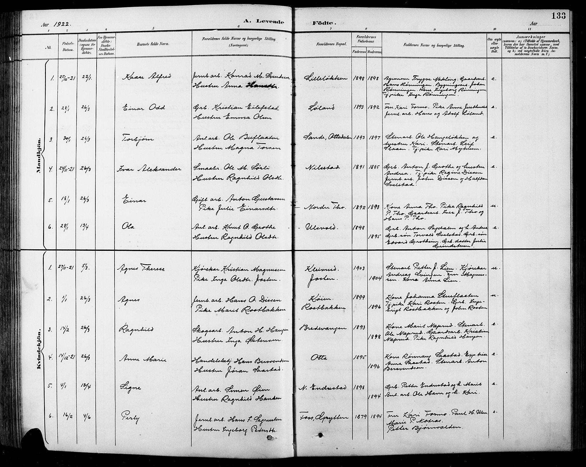 SAH, Sel prestekontor, Klokkerbok nr. 1, 1894-1923, s. 133