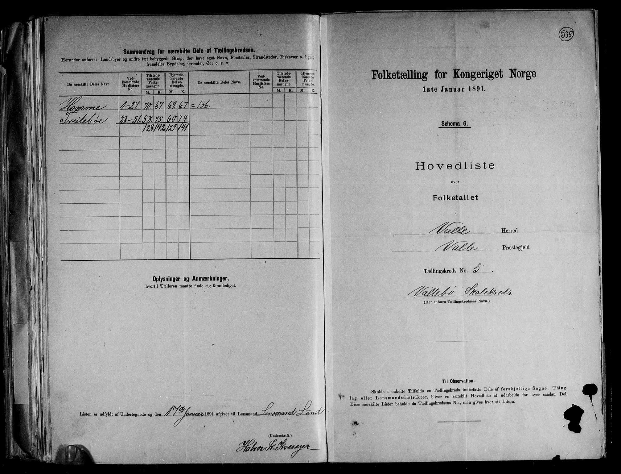 RA, Folketelling 1891 for 0940 Valle herred, 1891, s. 13