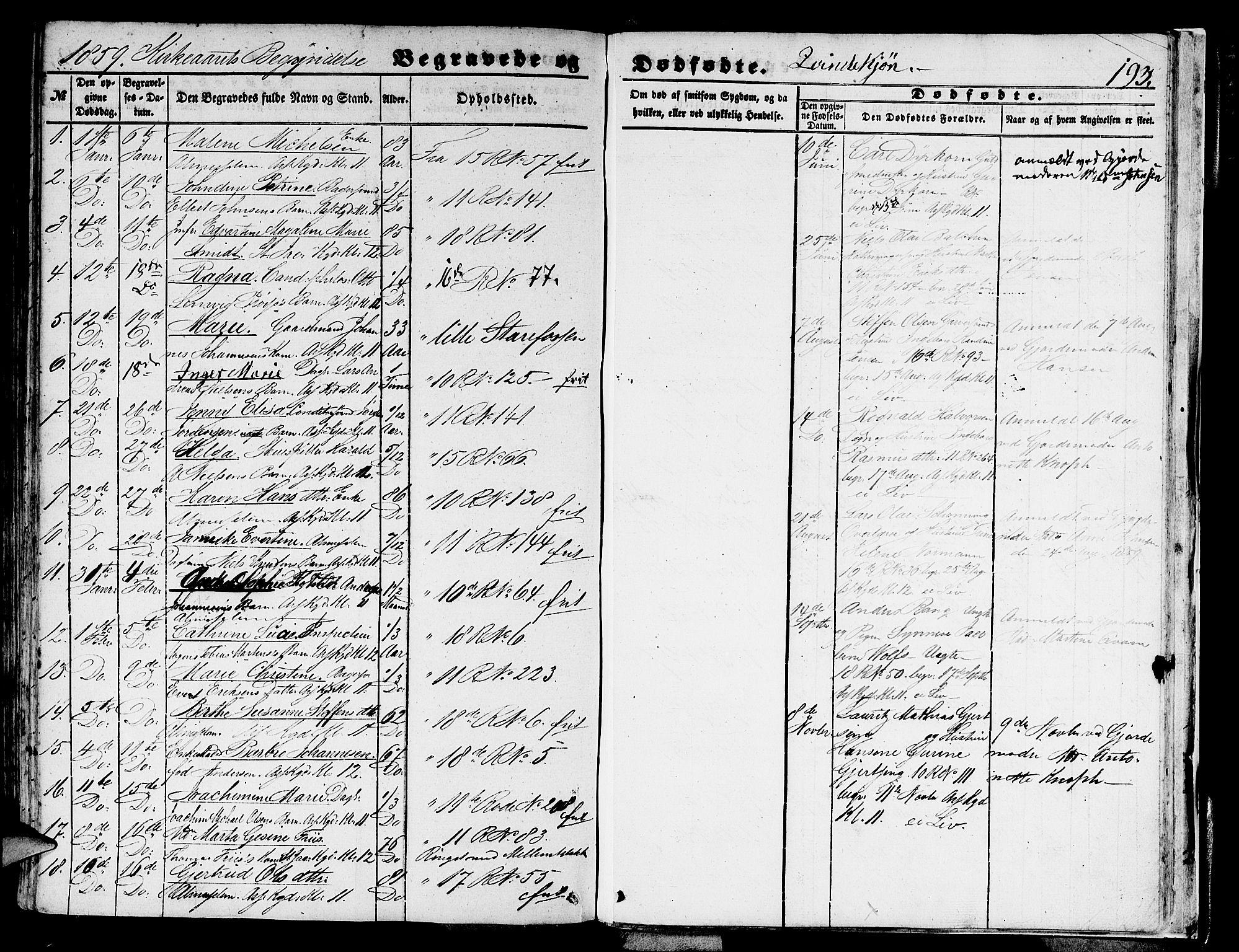 SAB, Domkirken Sokneprestembete, H/Hab/L0038: Klokkerbok nr. E 2, 1847-1859, s. 193